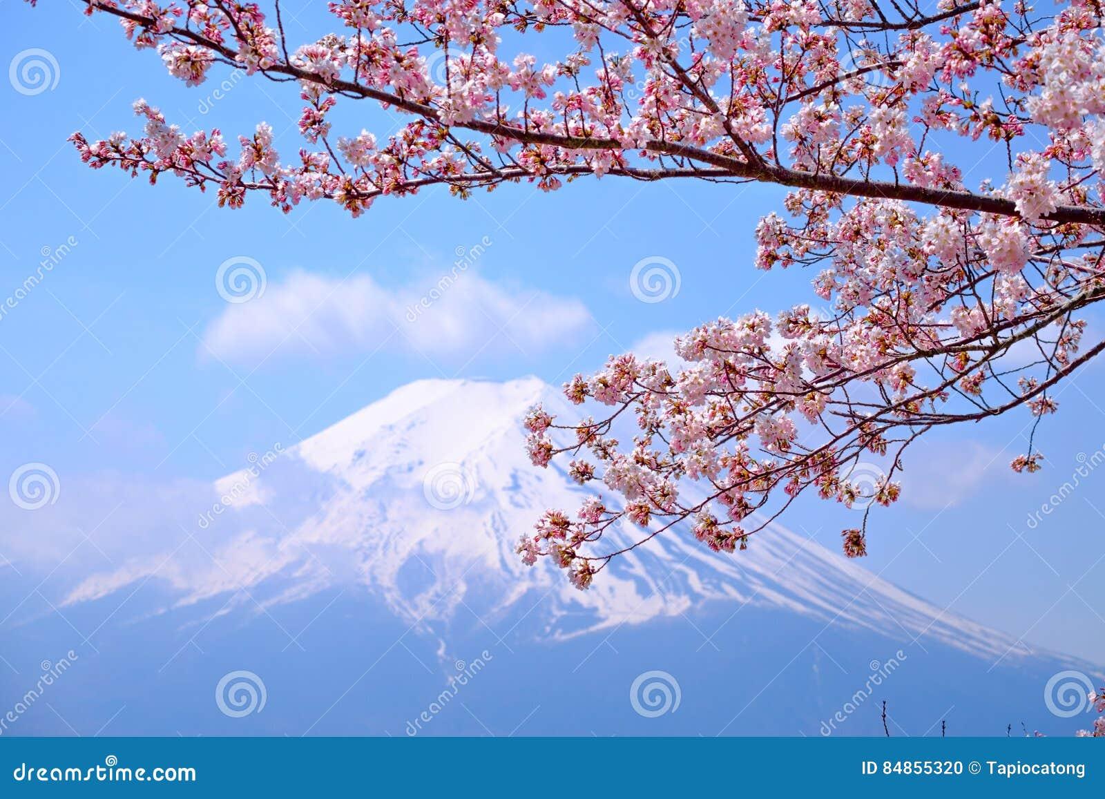 MT Fuji en Cherry Blossom in de Lentetijd van Japan (Japanse Cal