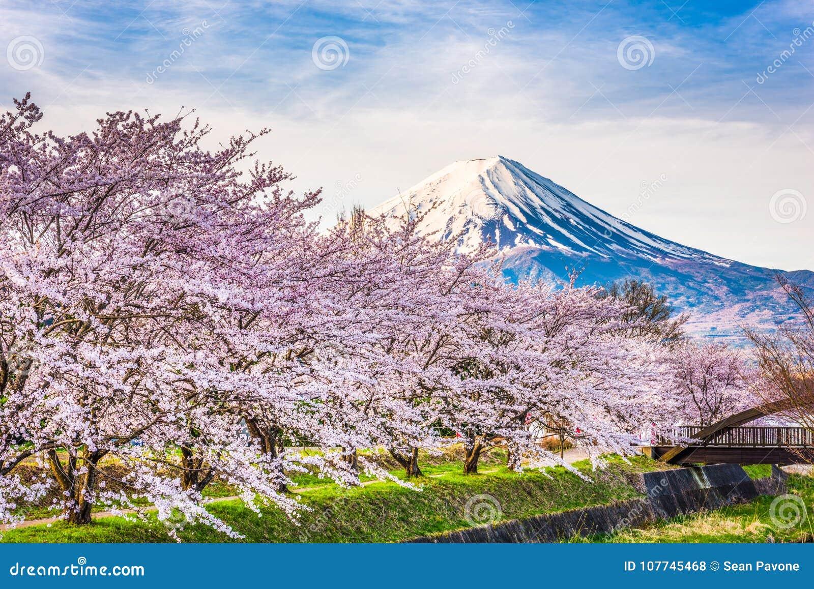Mt Fuji Japón en primavera
