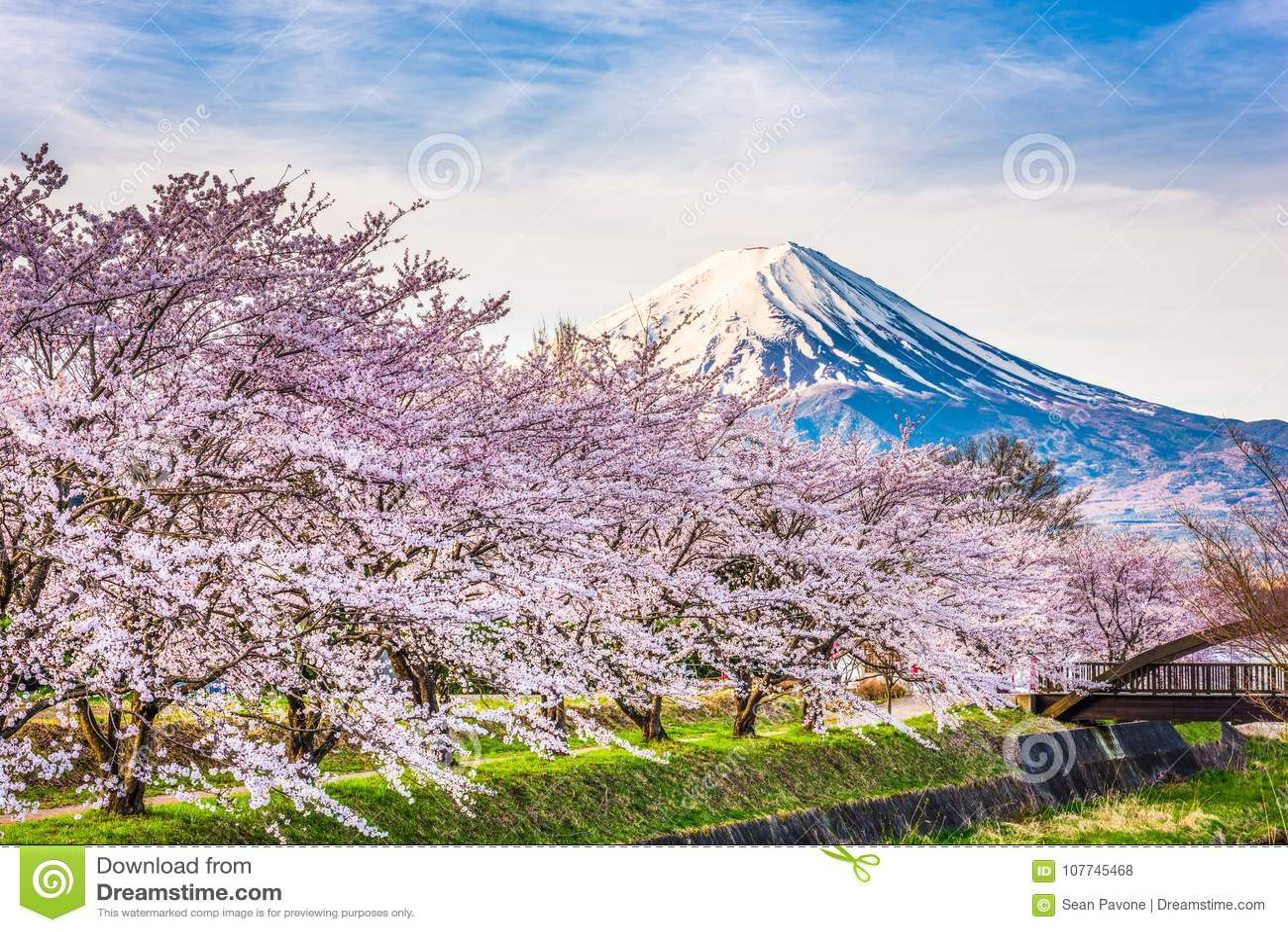 MT Fuji Japan in de Lente