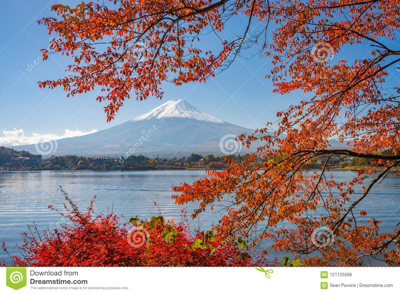 Mt. Fuji, Japan in Autumn Season