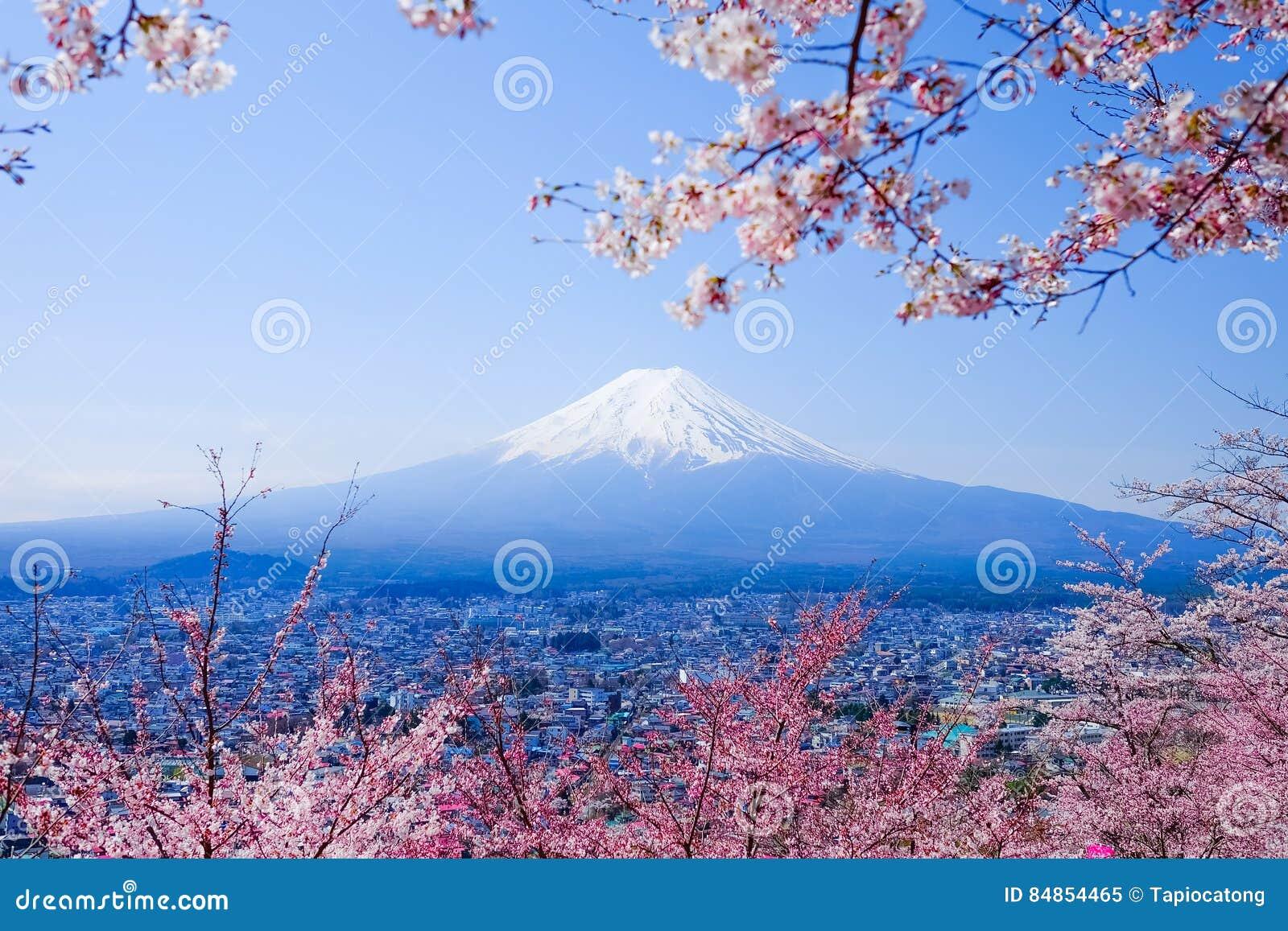 Mt Fuji med Cherry Blossom (Sakura) i våren, Fujiyoshida, Ja