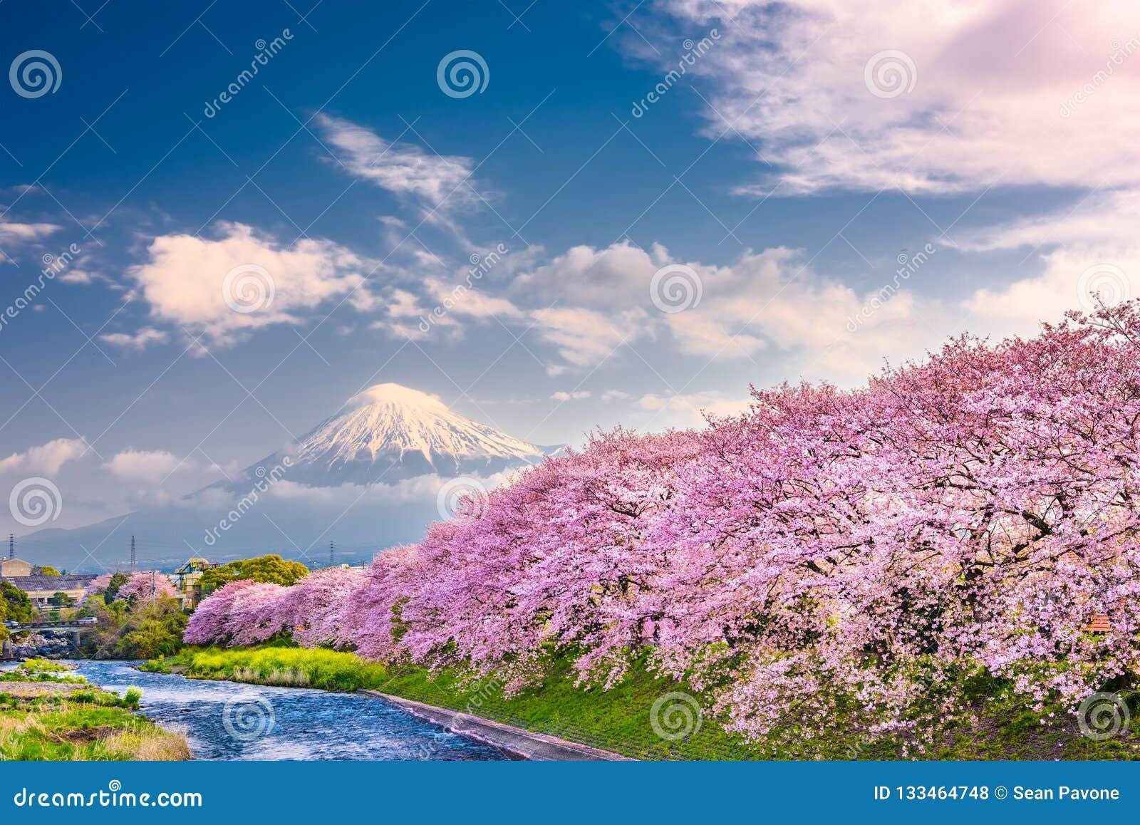 Mt Fuji, paisaje de la primavera de Japón