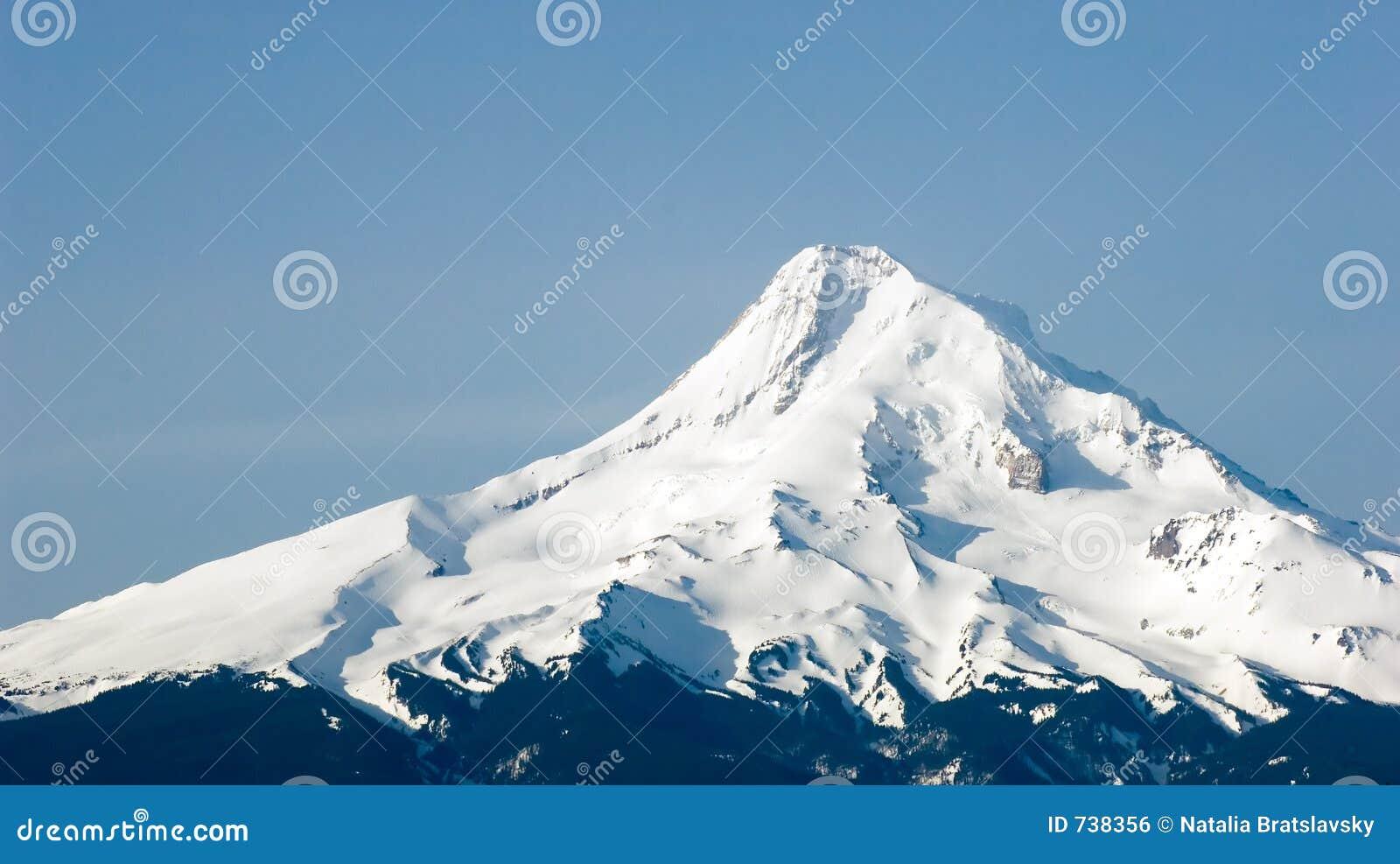 Mt Hood Stock Photo Image Of Forest Northwest Portland
