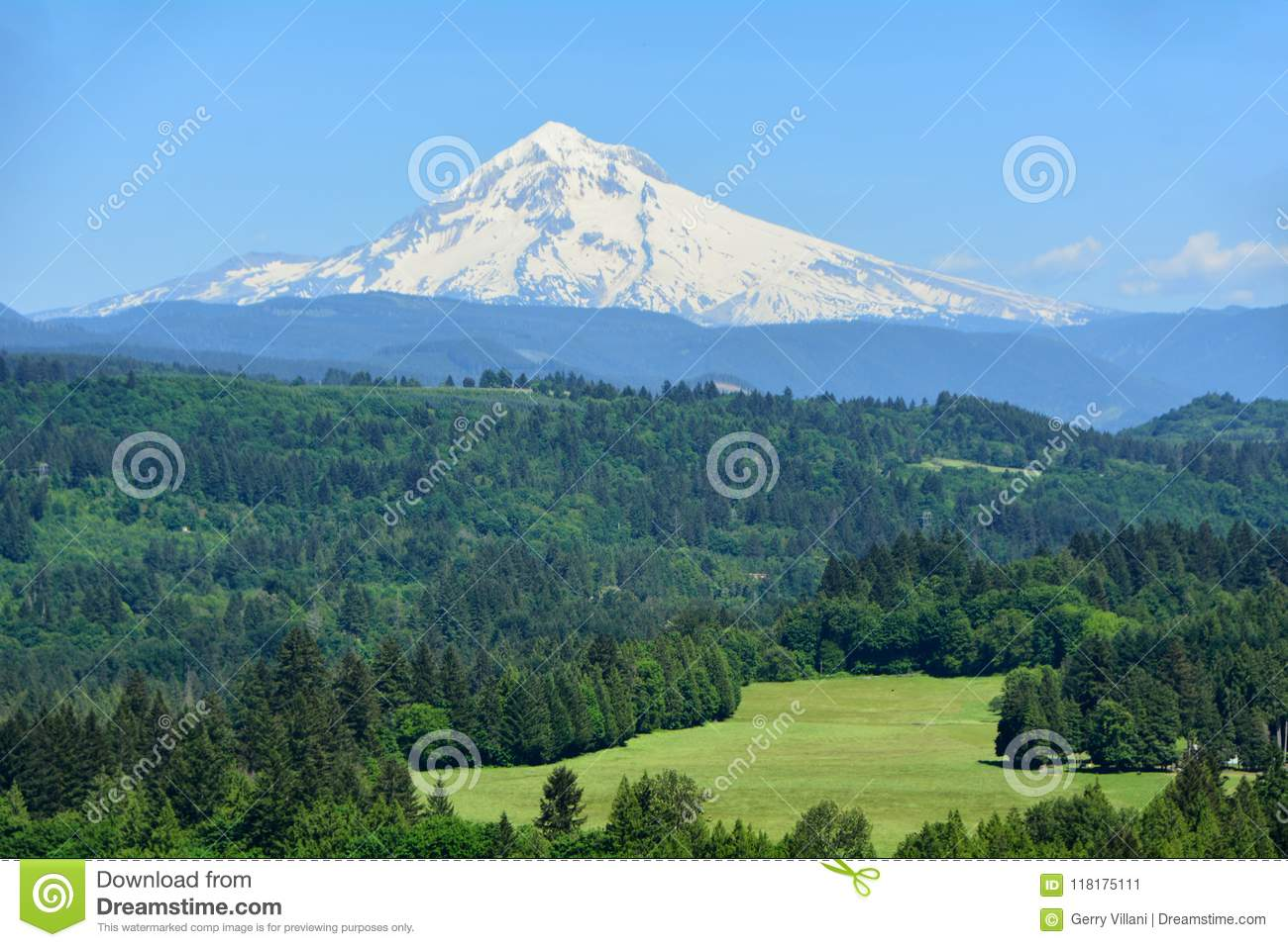 Download Mt. Hood From Jonsrud Point, Oregon Image 1 Stock Image - Image of bull, green: 118175111