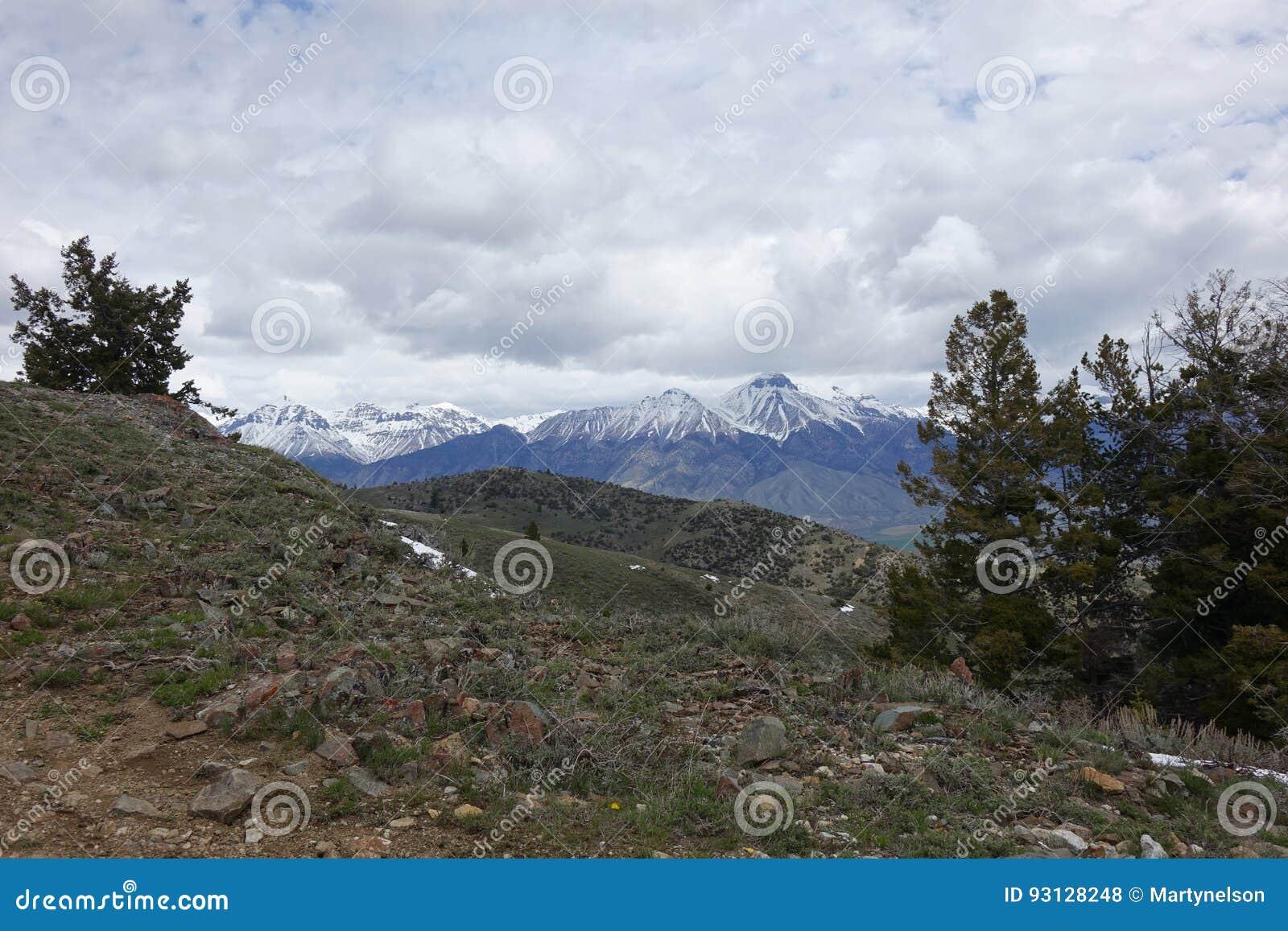 Mt McCaleb - Mackay, Idaho