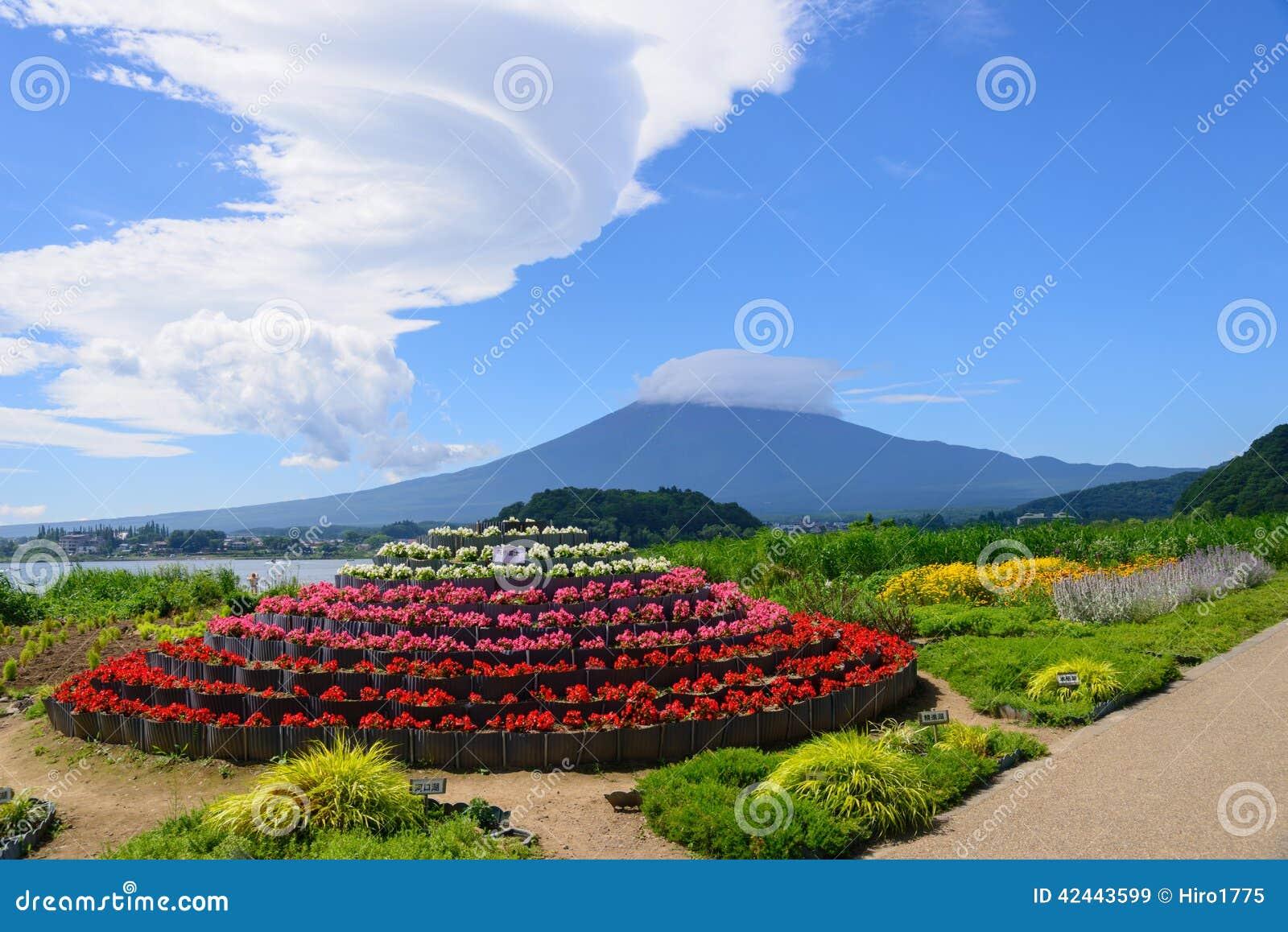 Mt Parque de Fuji y de Oishi