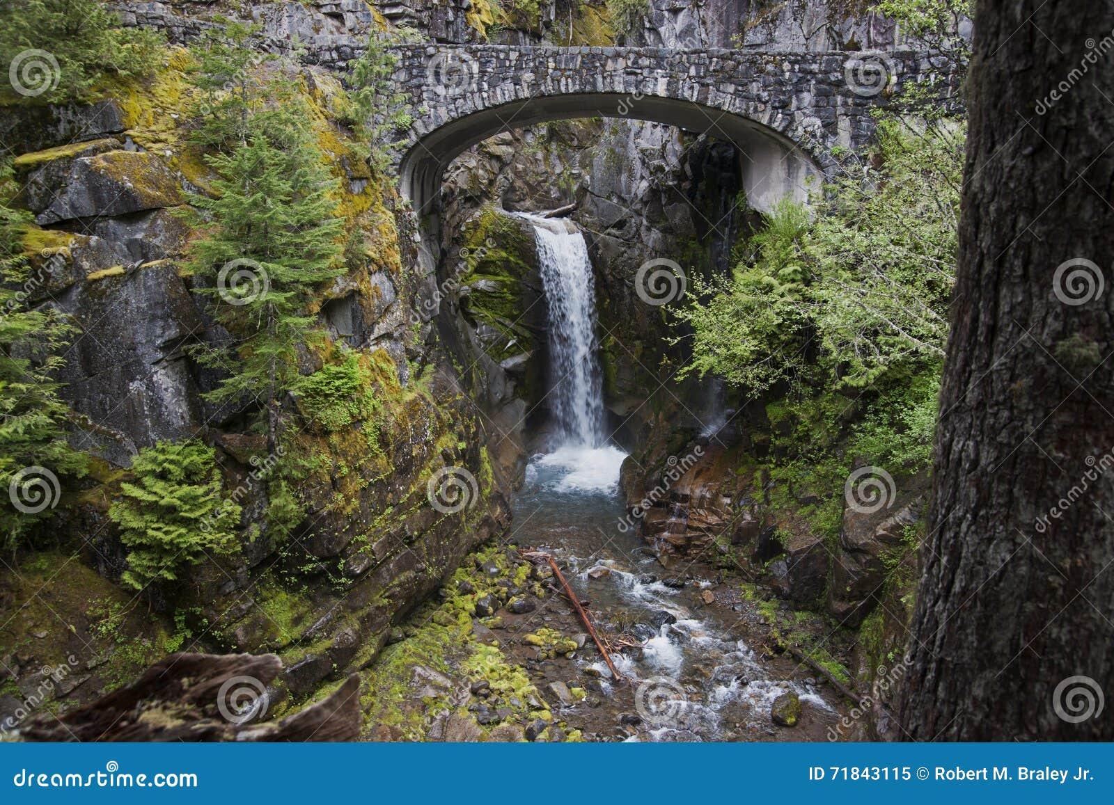 Mt Rainer Waterfall