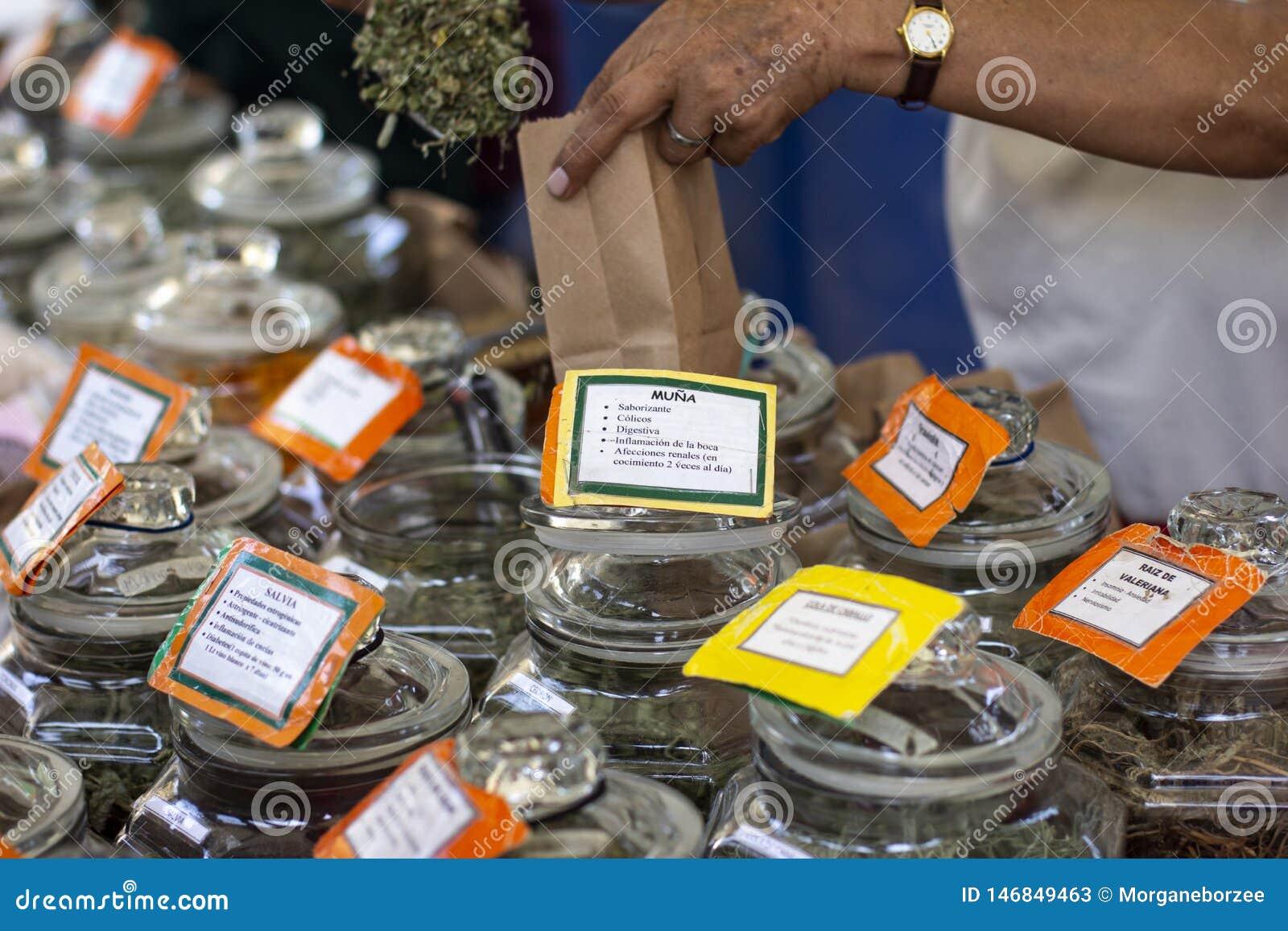 Muña-Anlage und andere Gläser mit getrockneten medizinischen Kräutern