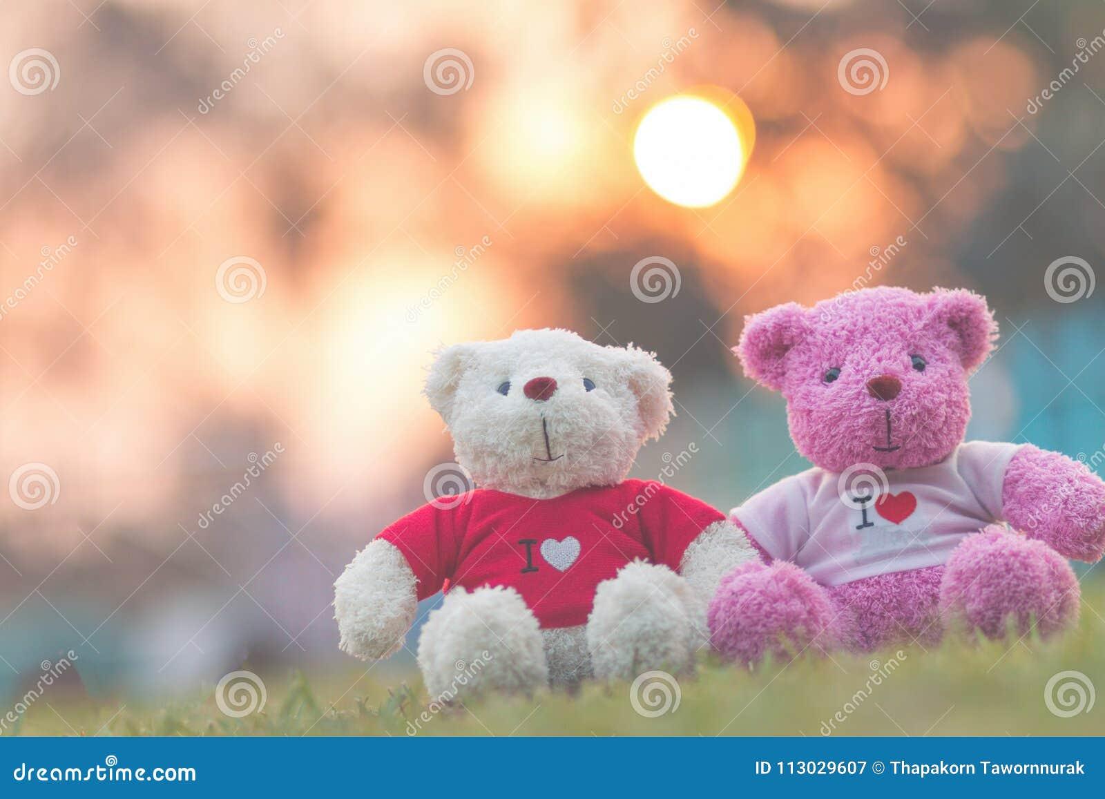 Muñeca de dos osos que se sienta junto, día del ` s de la tarjeta del día de San Valentín y concepto del amor