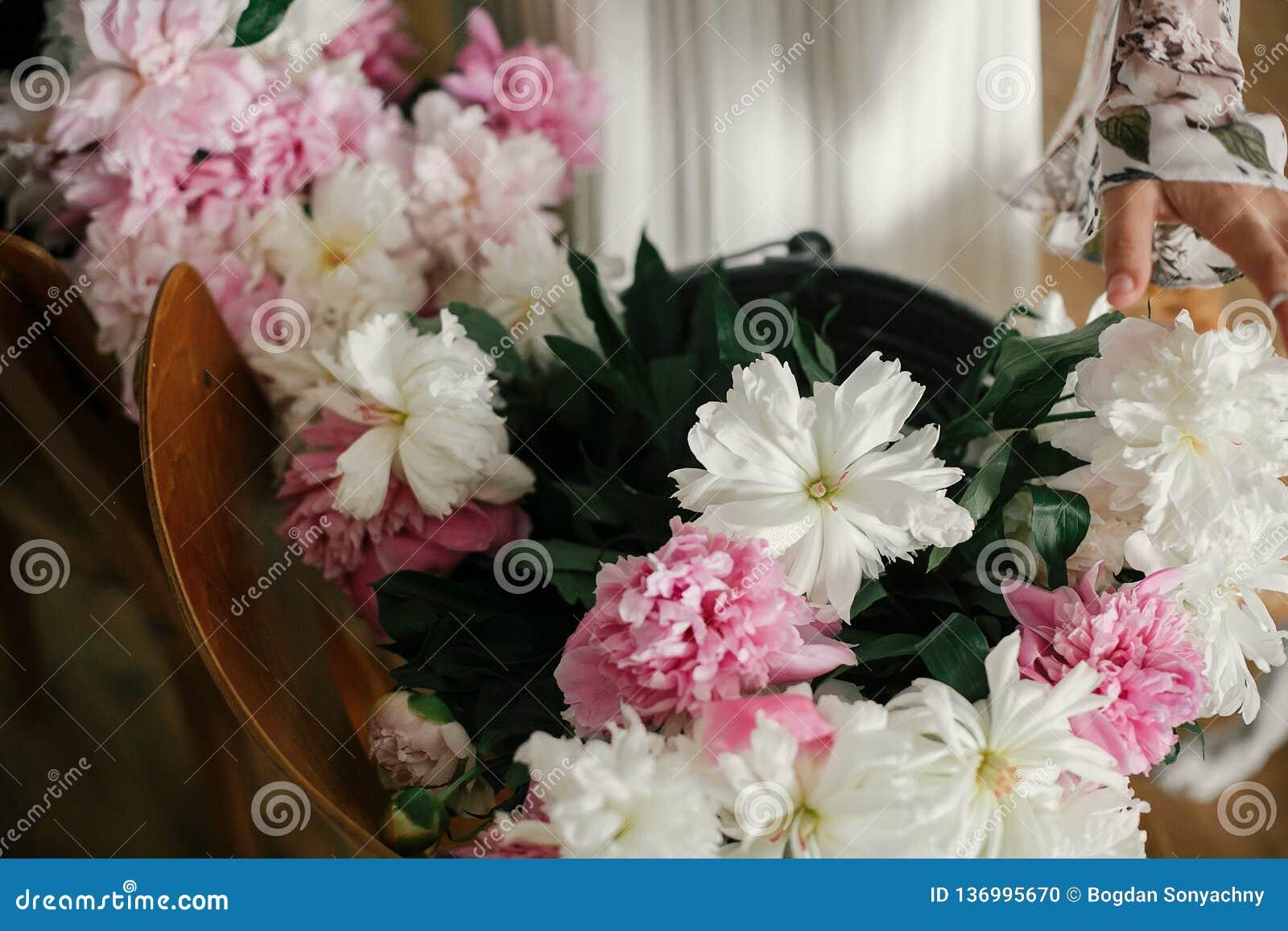 Muchacha de Boho que sostiene las peonías del rosa y blancas en manos en la silla de madera rústica Mujer elegante del inconformi