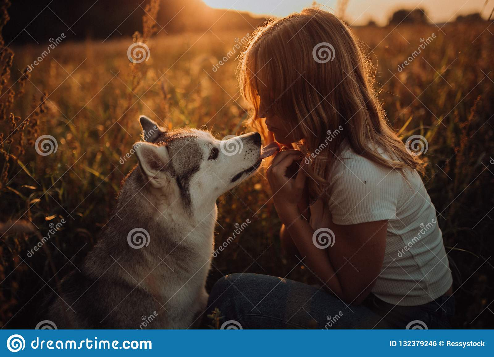 Muchacha elegante hermosa con el perro, puesta del sol Fondo del campo