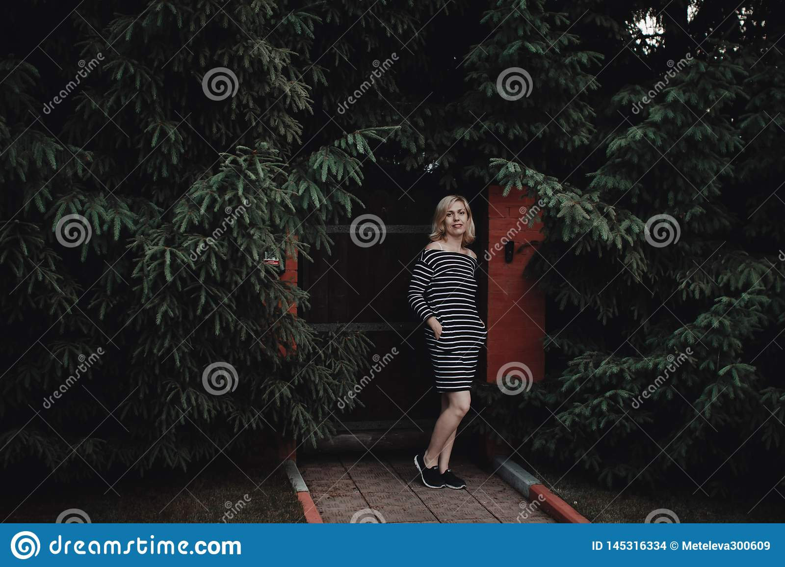 Muchacha rubia interesante elegante en un vestido rayado en una cerca de madera y un seto grueso de abetos Aqu? y ahora