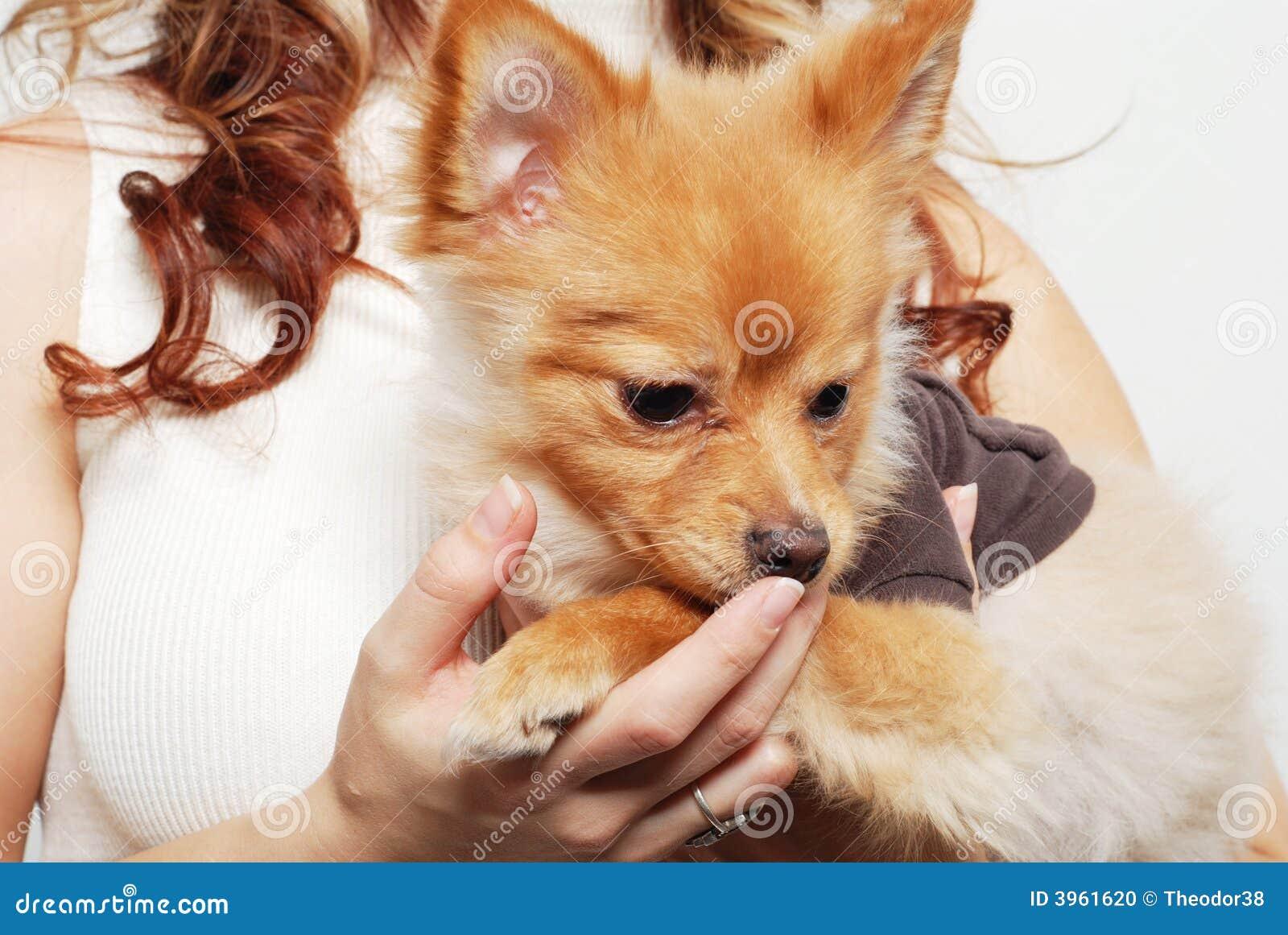 Muchacha y su animal doméstico