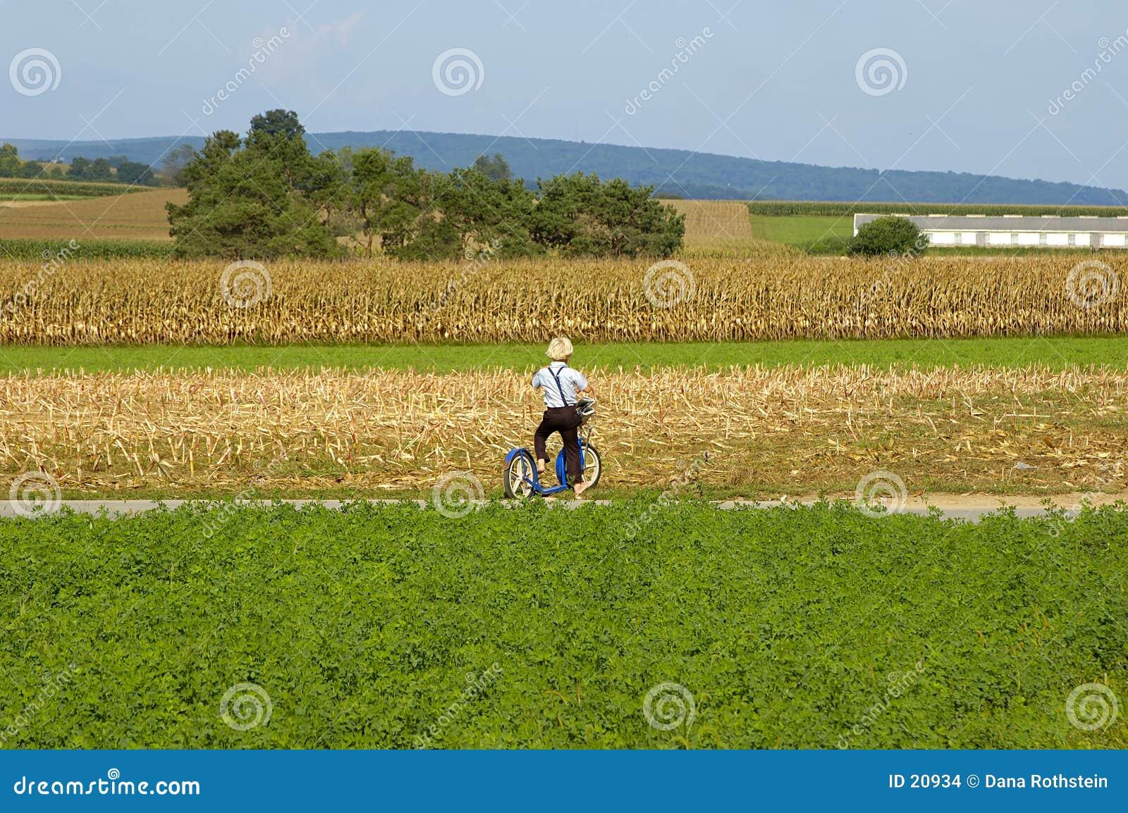 Muchacho de Amish en la vespa.