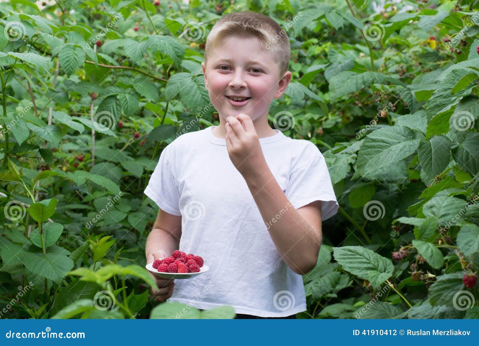 Muchacho en los arbustos de frambuesas