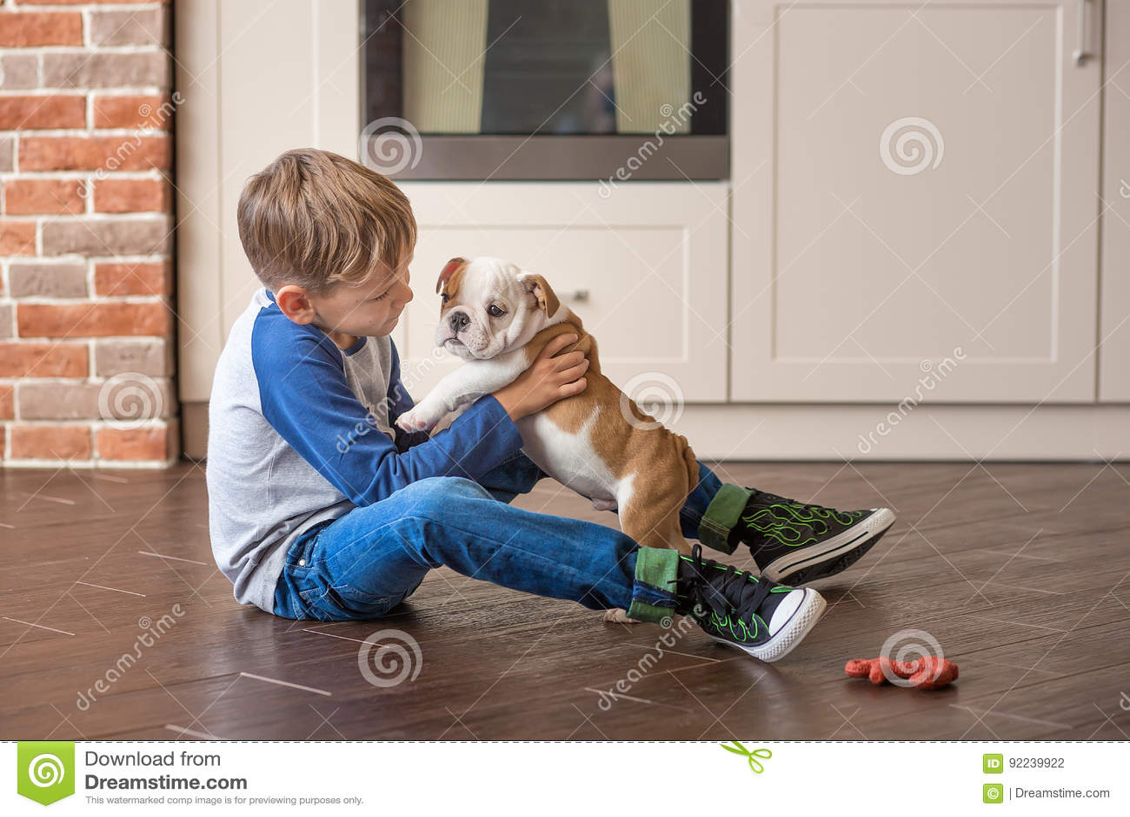 Muchacho lindo que juega con el dogo del inglés del perrito