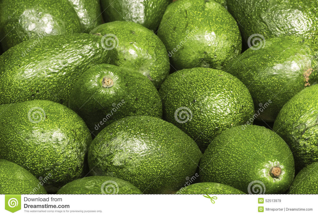 Mucho aguacate