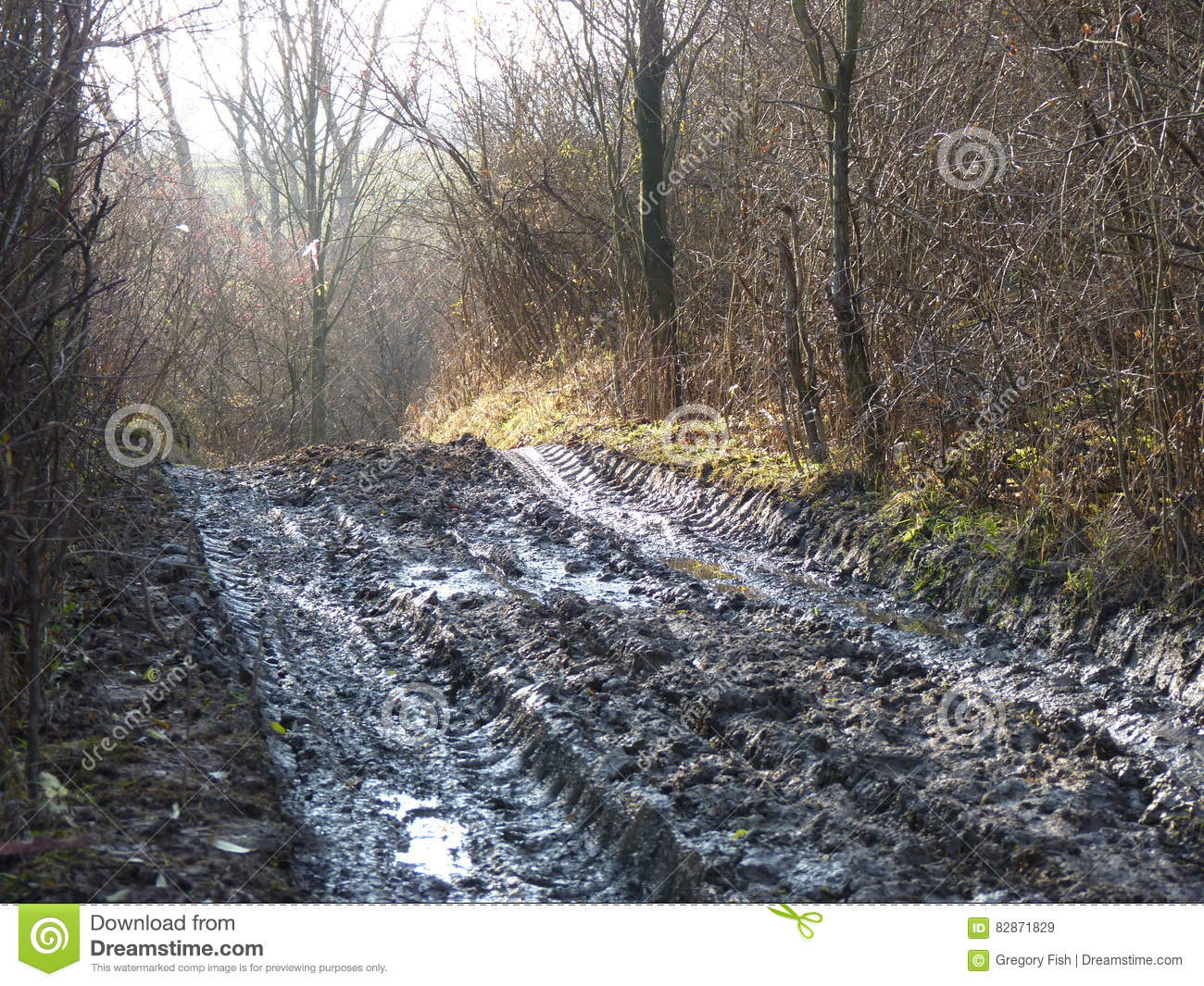 Mud and puddles on the dirt road.