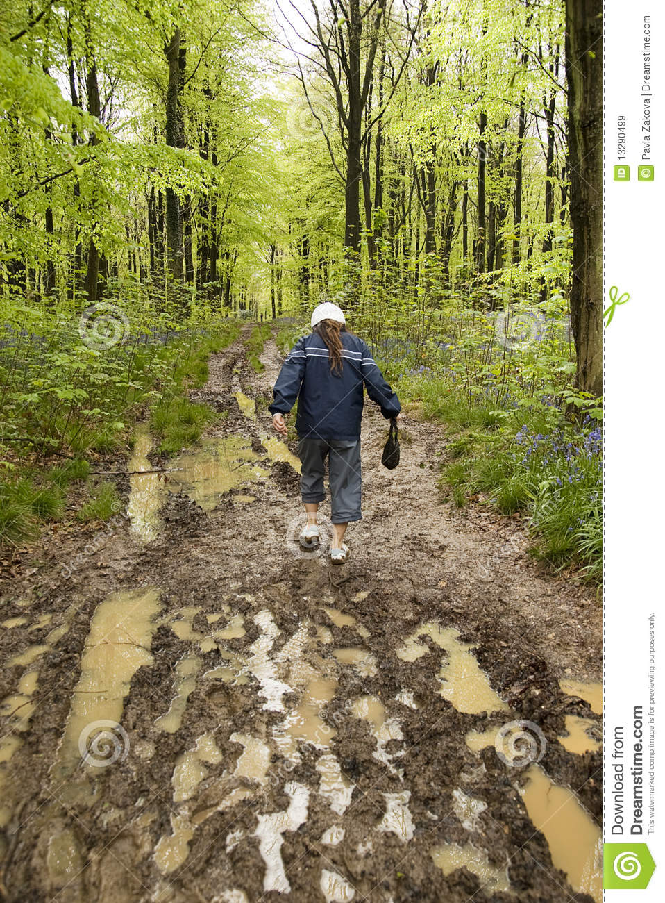 Muddy Spring Walk Royalty Free Stock Images Image 13290499
