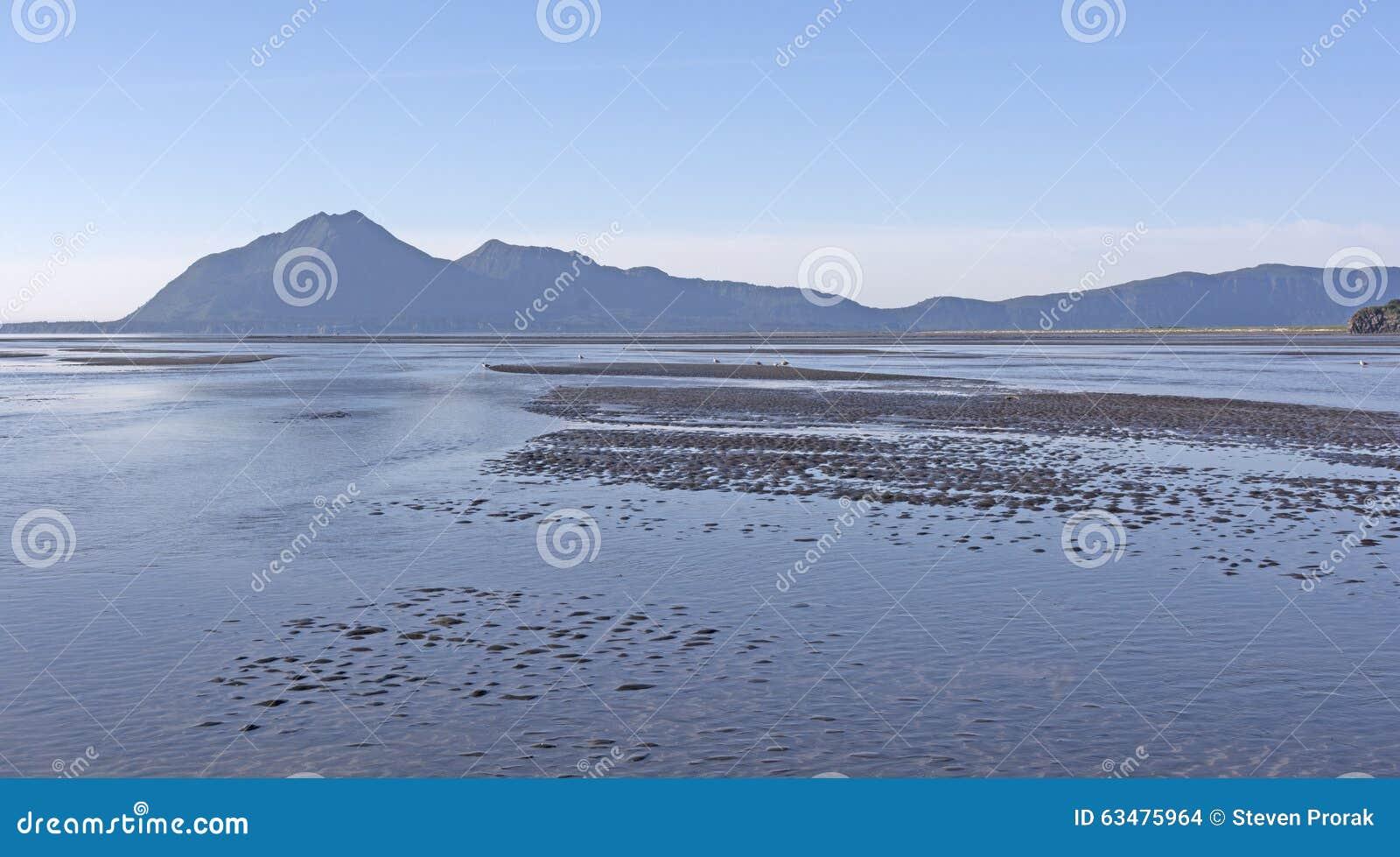 Mudflat de marée à marée basse