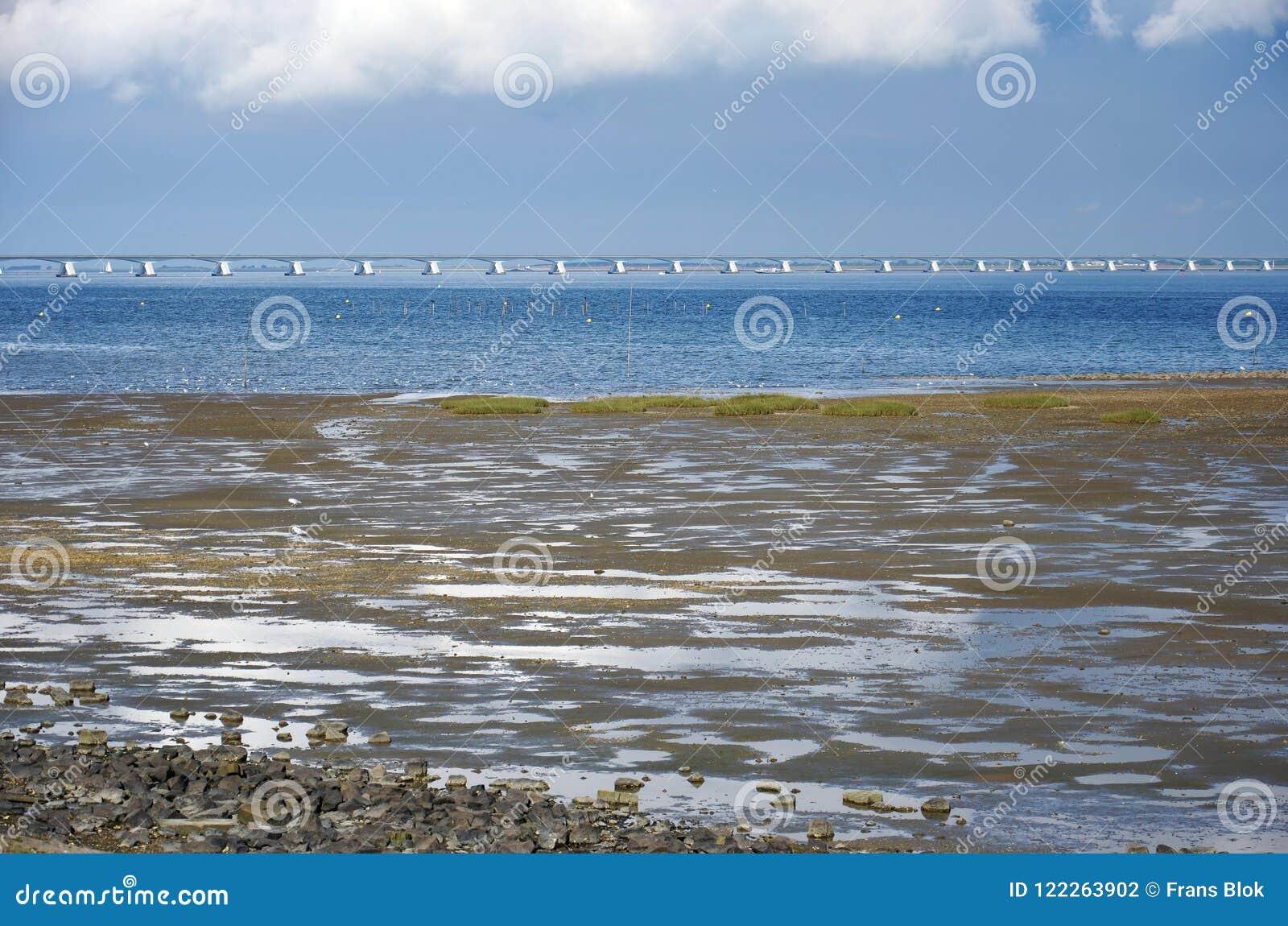 Mudflats, estuário e ponte