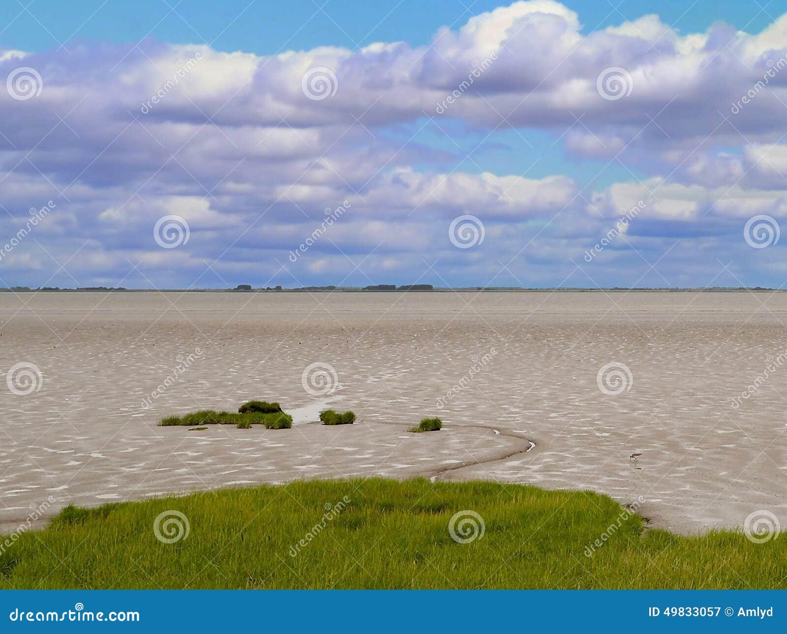 Mudflats in estuarium op heldere dag