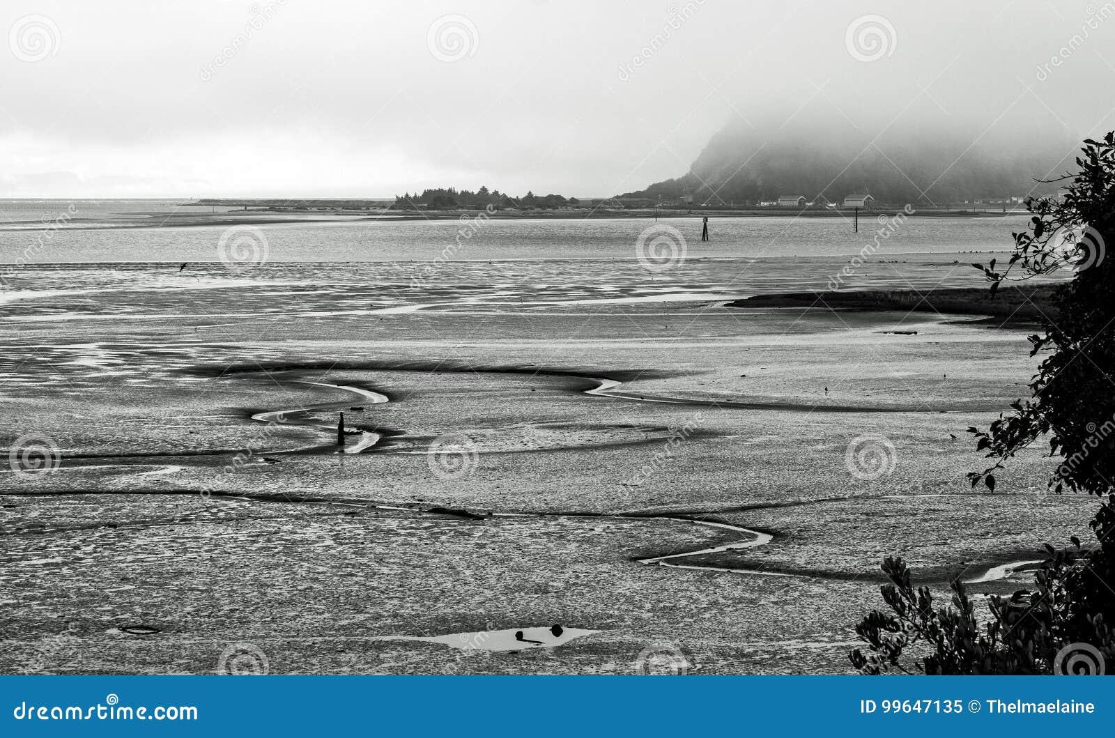 Mudflats at Low Tide op een Mistige Dag in zwart-wit