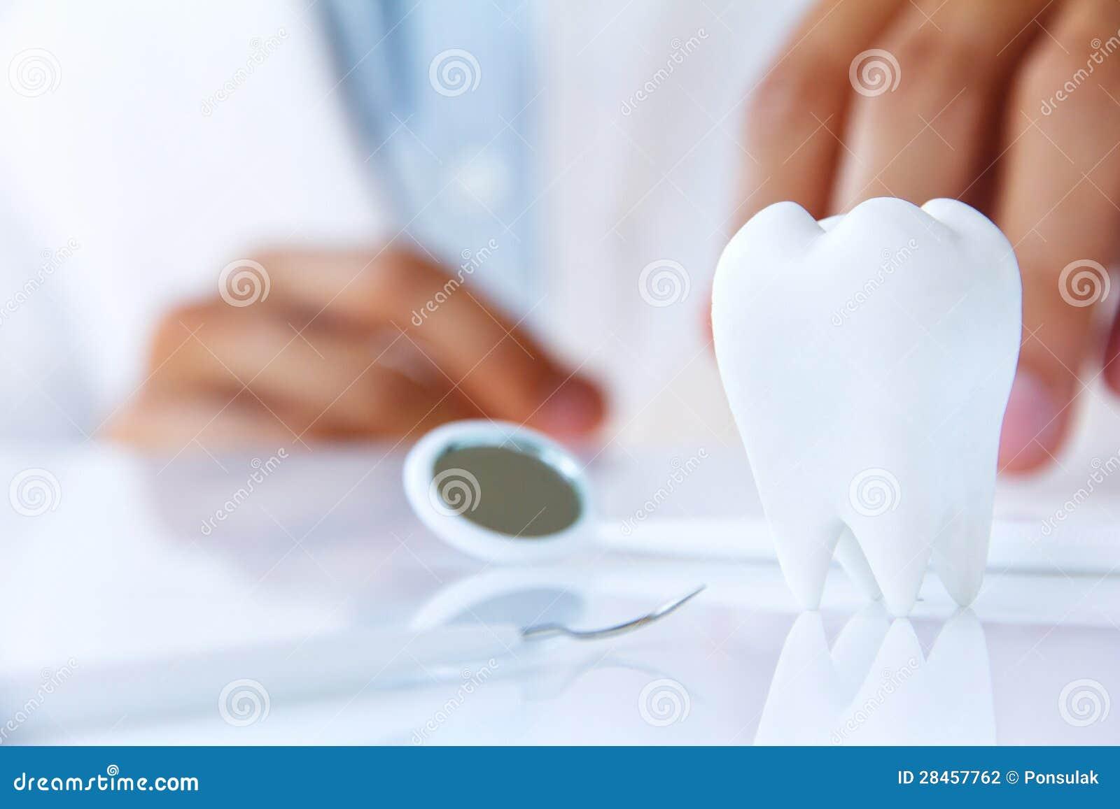 Muela, concepto dental