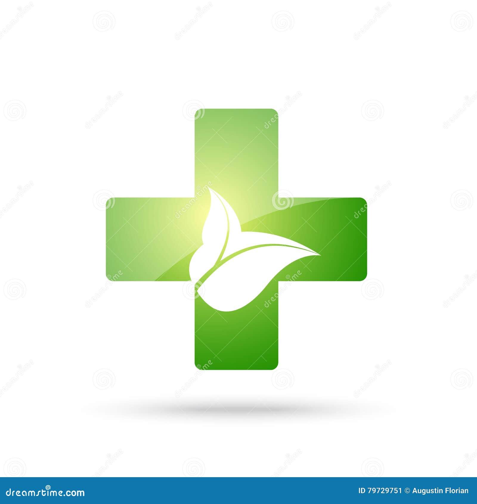 Muestra cruzada verde con las hojas