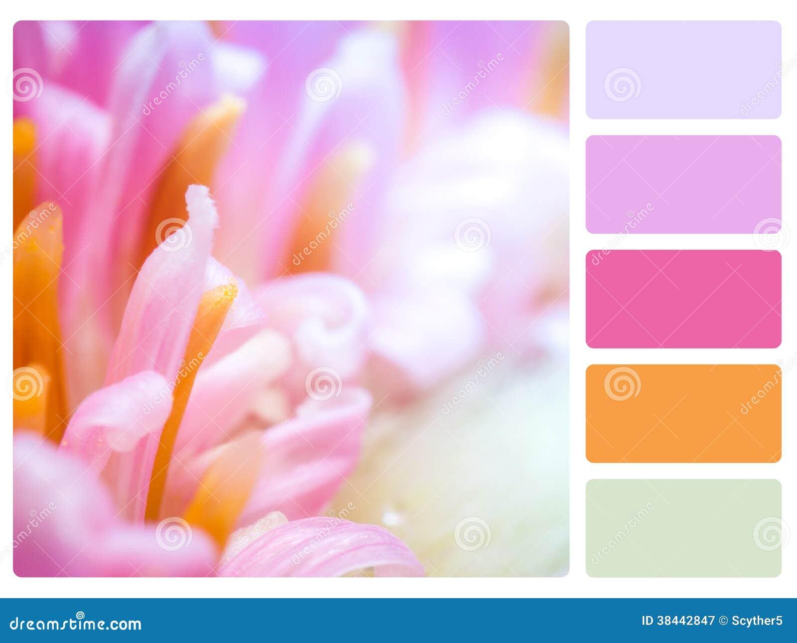 Muestra de la paleta de color.