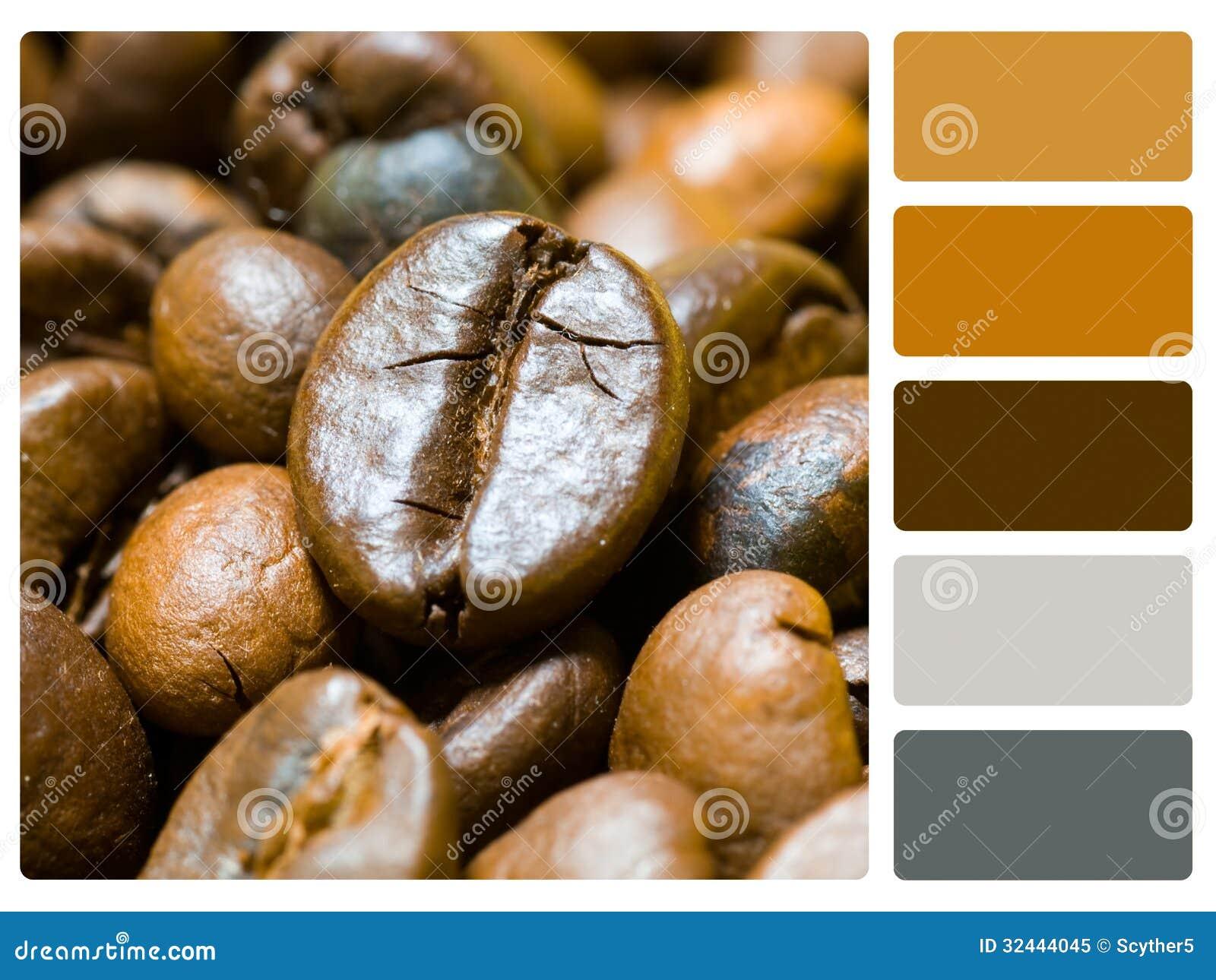 Muestra de la paleta de color de los granos de café
