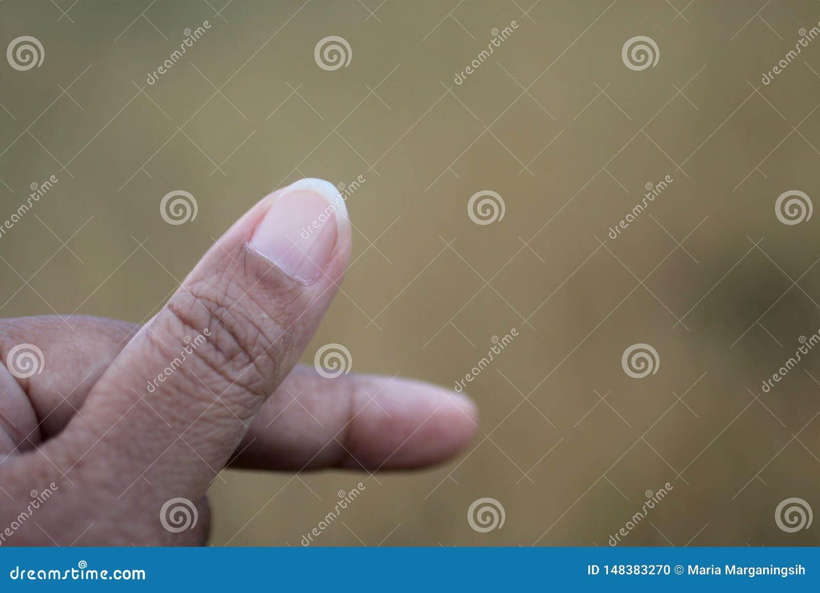 Muestra de Saranghae Muestra del amor del corazón con los fingeres