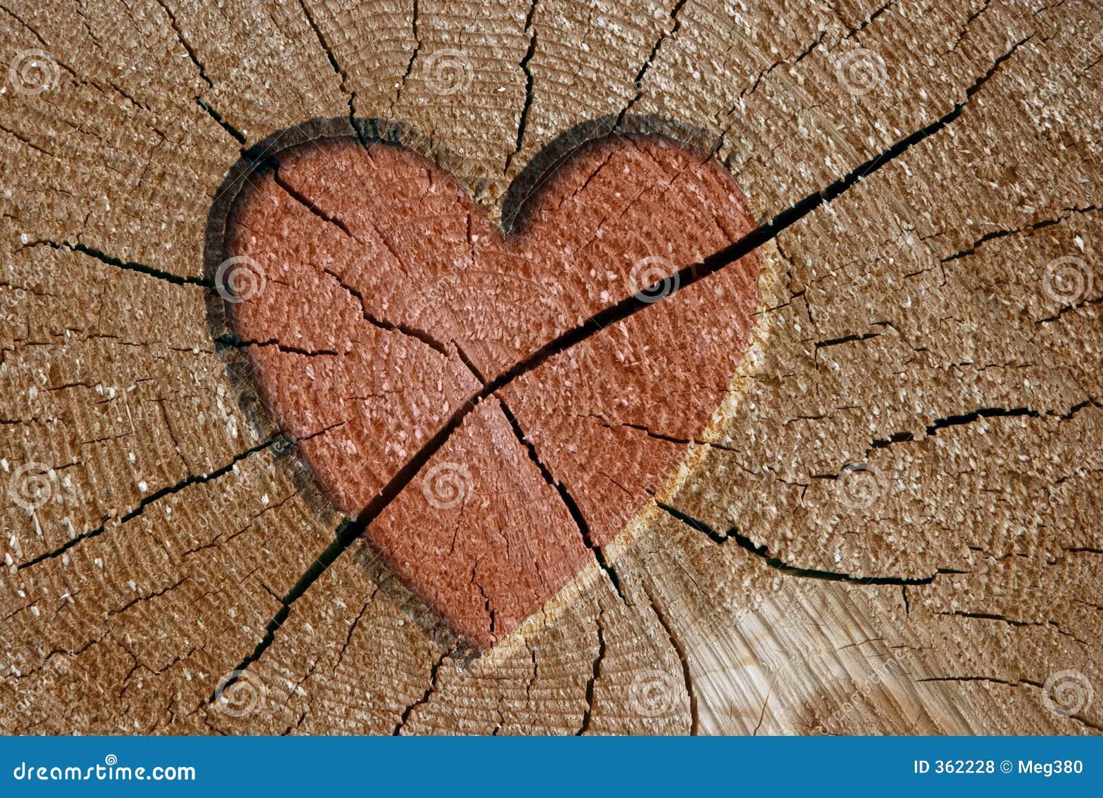 Muestra del corazón