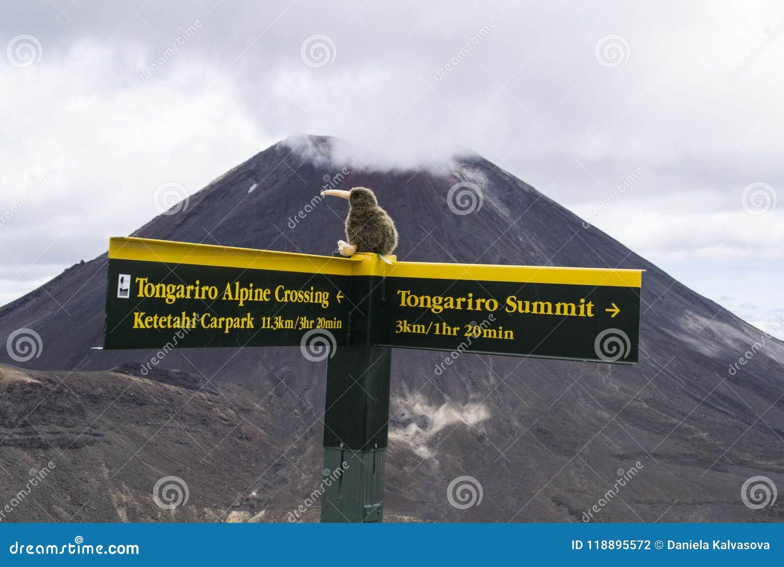 Muestra turística amarilla del poste indicador en la travesía alpina de Tongariro del gran paseo En la condenación del Mt del vol