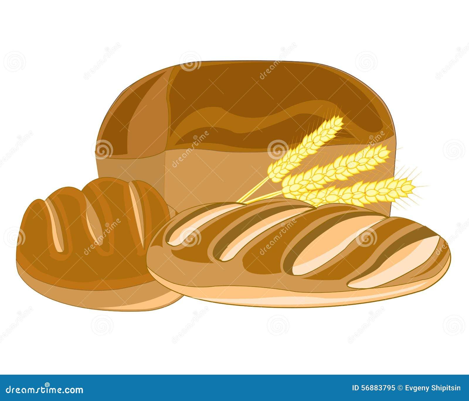Muffin e pagnotta lunga
