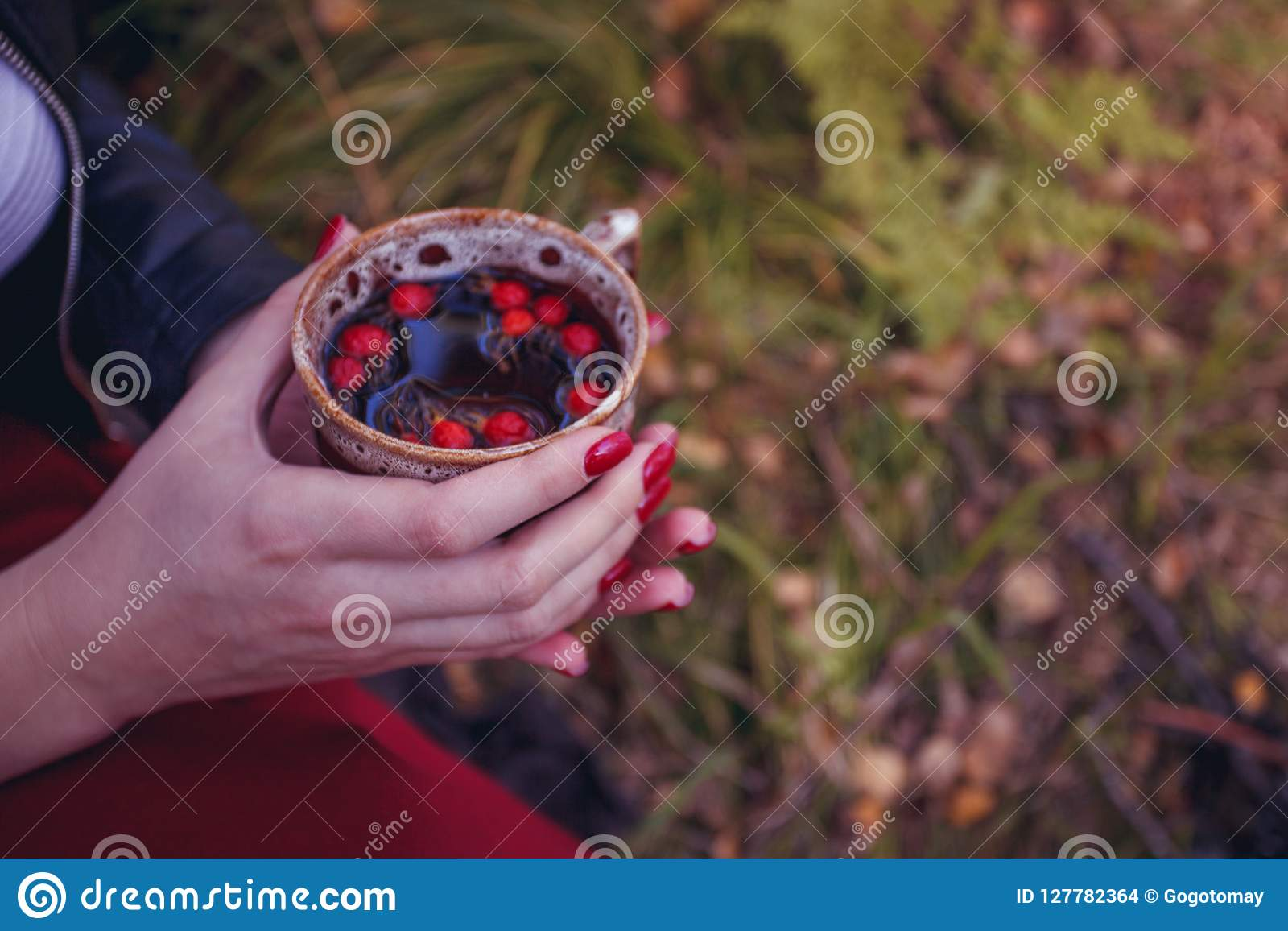 Christmas Floating Tea Cups.Mug Of Hot Tea In Woman Hand Is Autumn In A Forest Foliage
