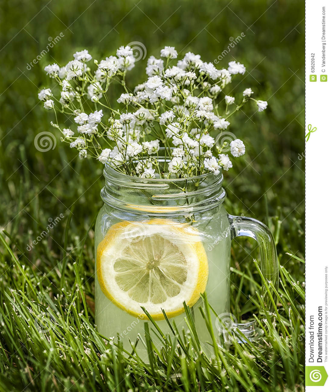 Mug of lemonade in the grass with tiny flowers stock photo image mug of lemonade in the grass with tiny flowers stock photo image 63620942 dhlflorist Image collections