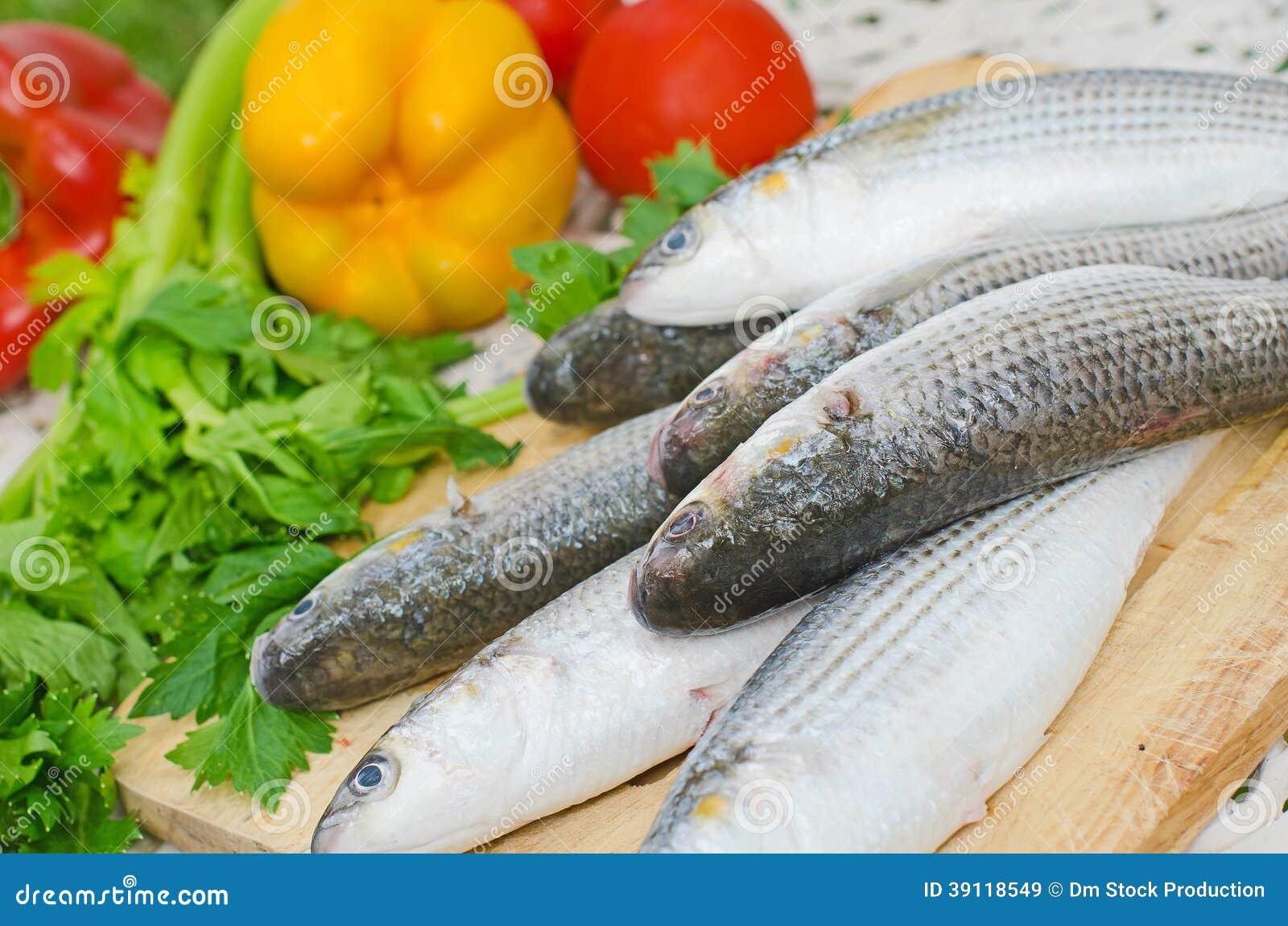Mugil cephalusvissen