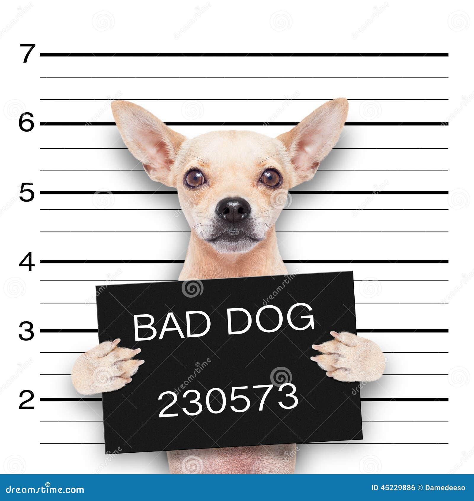 Puppy Police Dog Cartoon