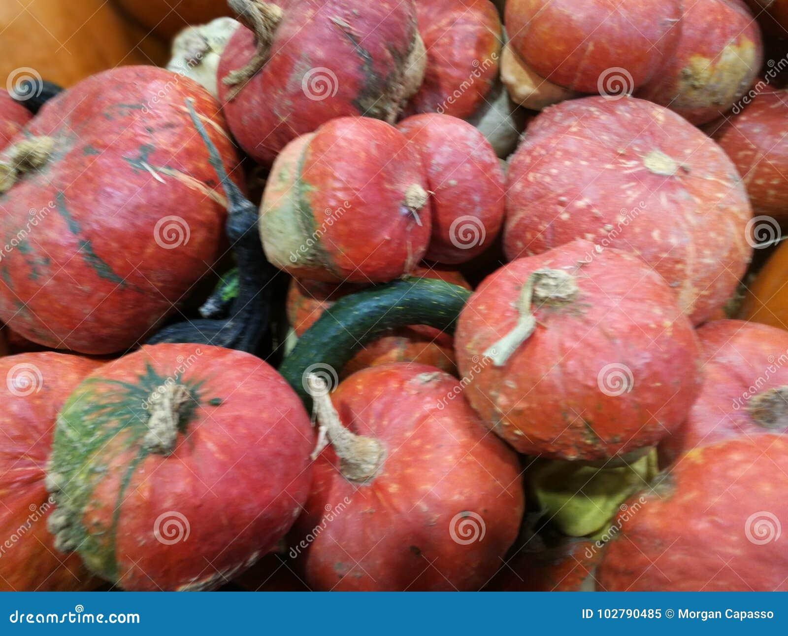 Muitas abóboras em um mercado dos fazendeiros