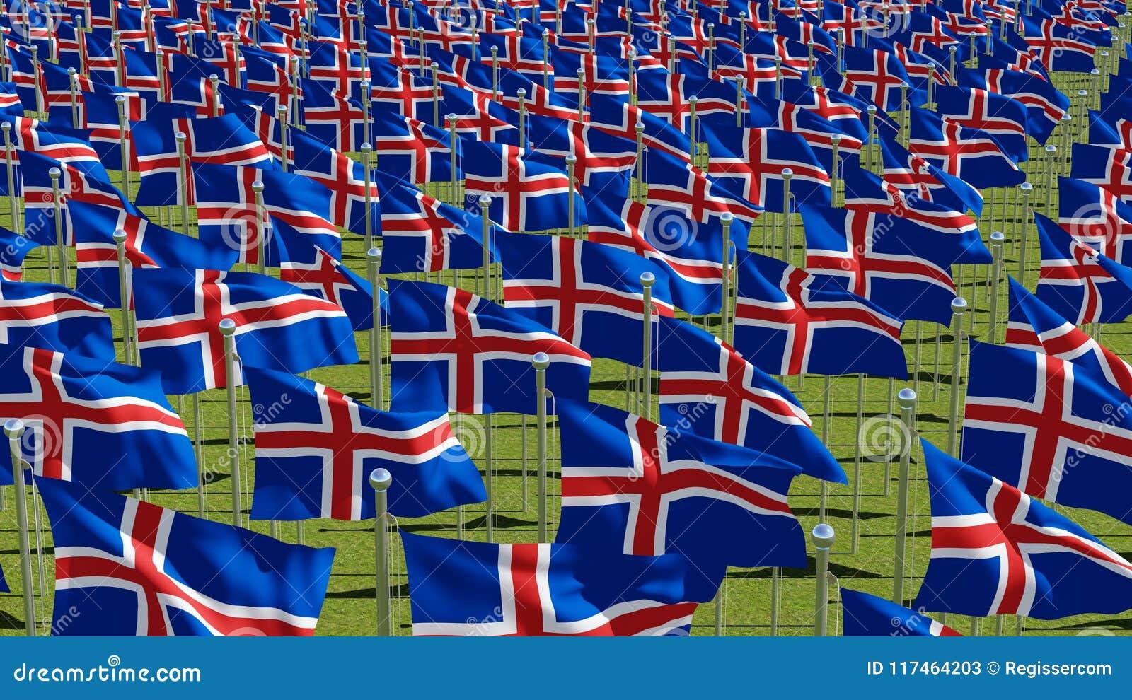 Muitas bandeiras de Islândia no campo verde