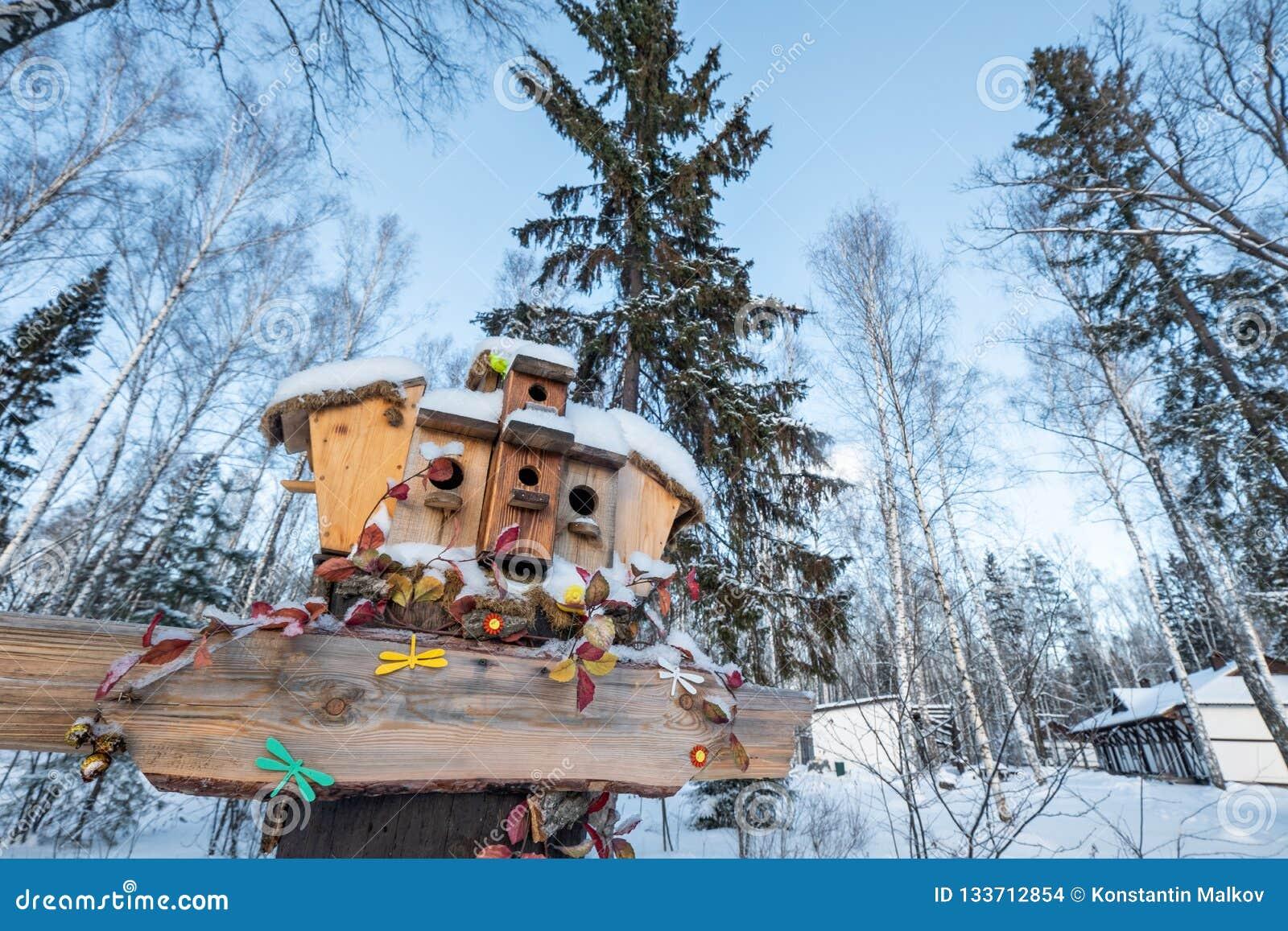 Muitos aviários, para pássaros e alimentadores na árvore Casas para pássaros no inverno sob a neve na árvore pássaro