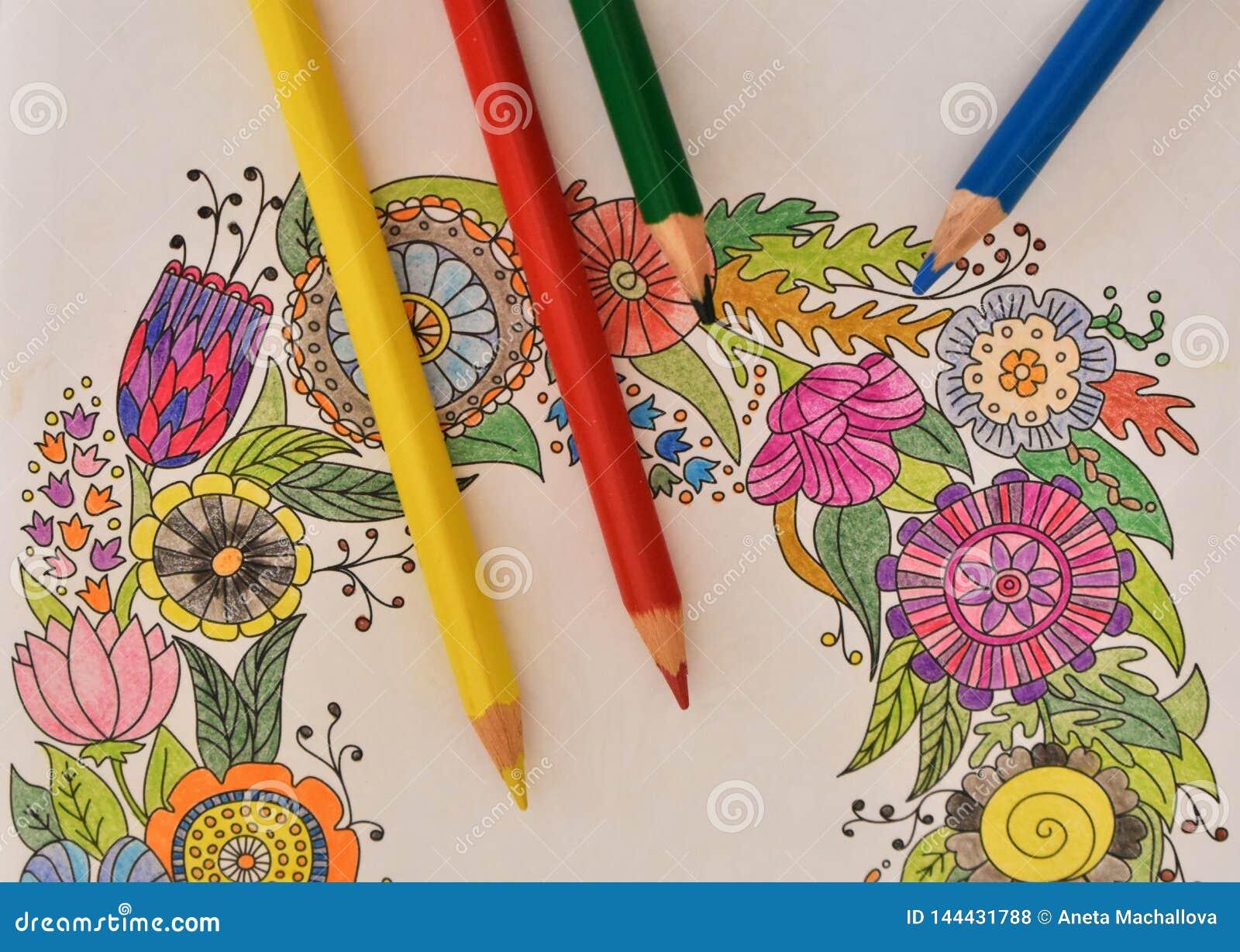 Muitos lápis coloridos no livro para colorir - arco-íris colorido