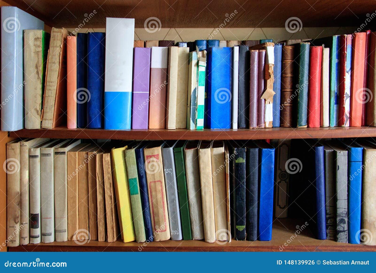 Muitos livros diferentes estão nas prateleiras