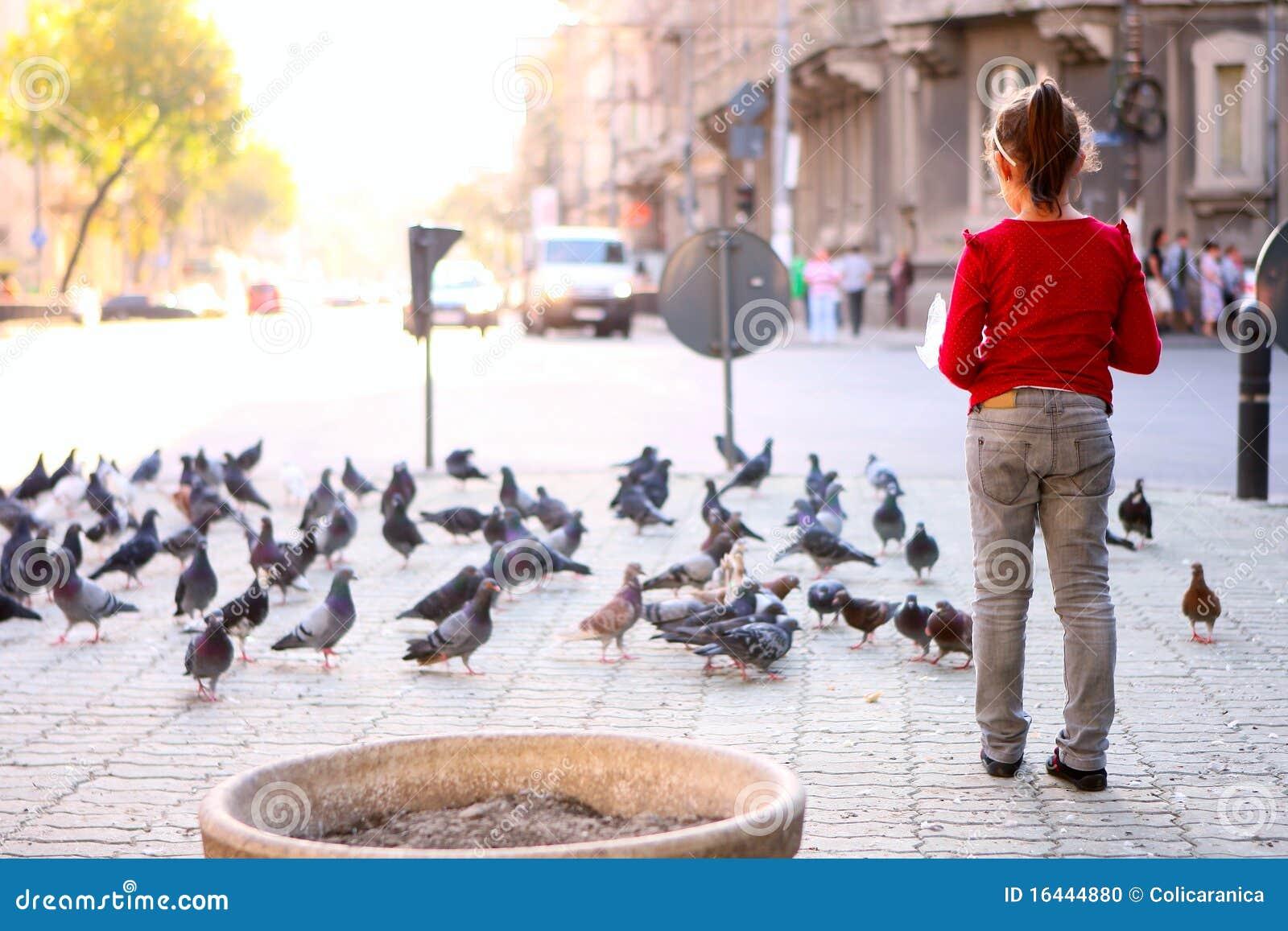 Muitos pombos e uma menina