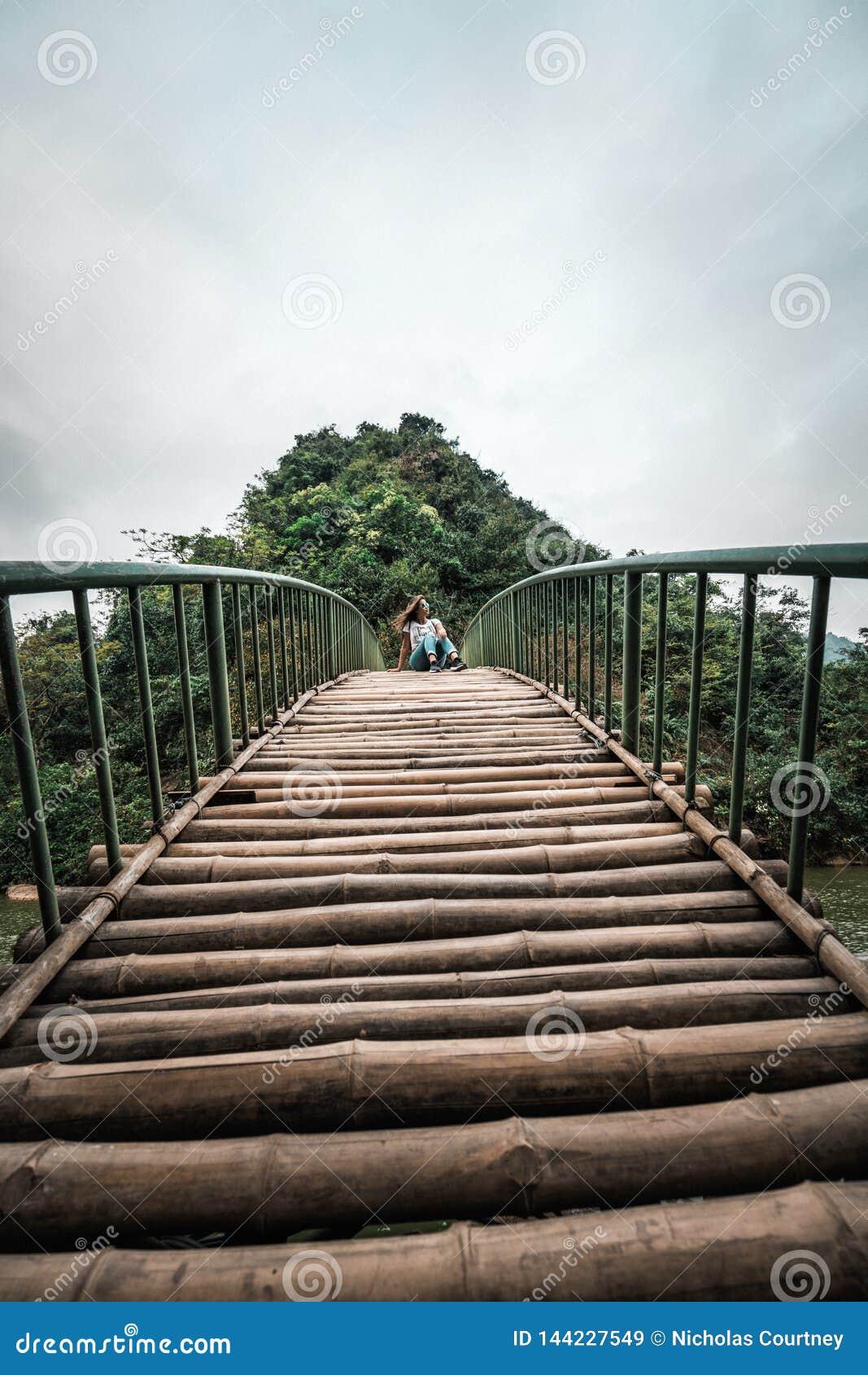 Mujer atractiva que presenta en las monta?as de Vietnam septentrional