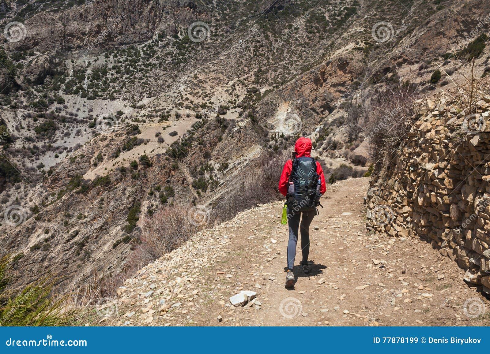 Mujer Bonita Joven Que Lleva Las Montañas Rojas Del Rastro De La Mochila De La Chaqueta El Senderismo De La Montaña Oscila El Fon Foto de archivo