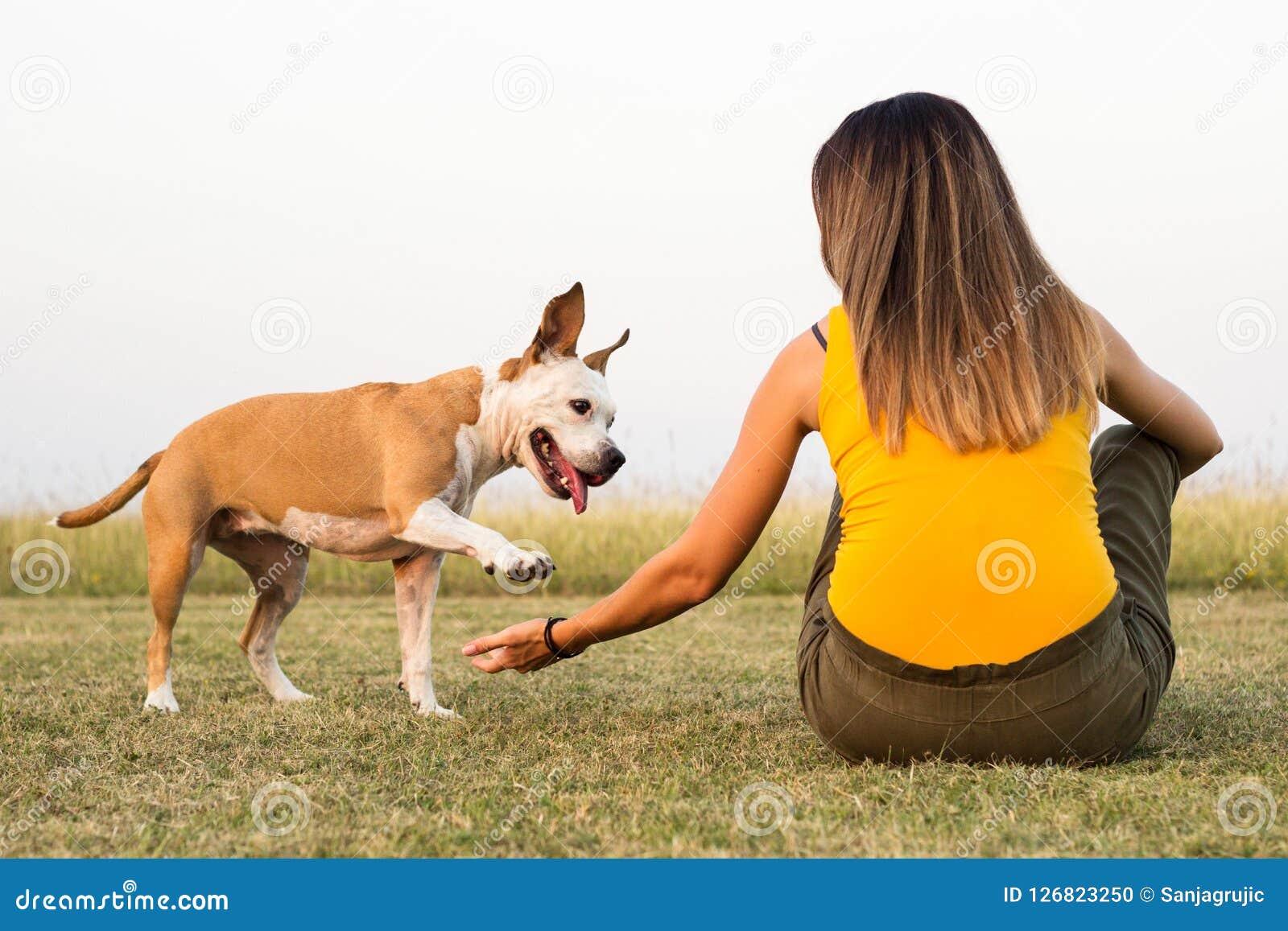 Mujer con su perro que se sienta en la hierba y la dulzura de los intercambios