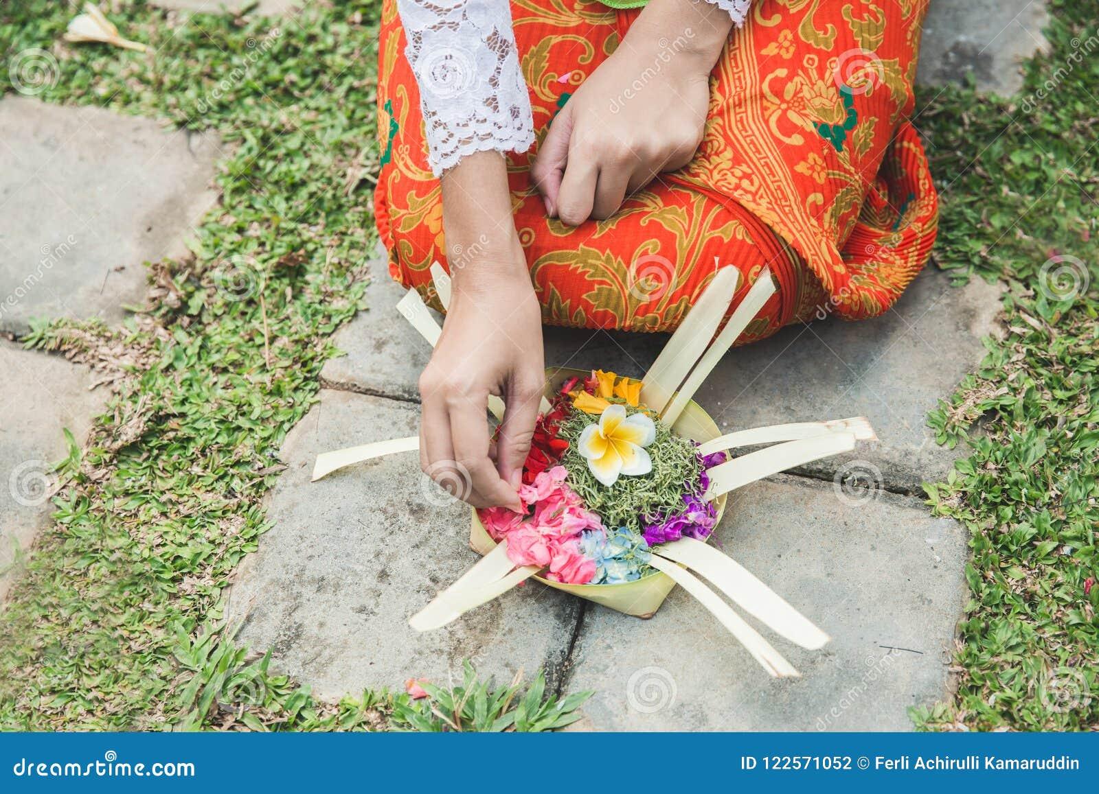 Mujer del Balinese que hace la sari de ofrecimiento del canang del ritual y que ruega en