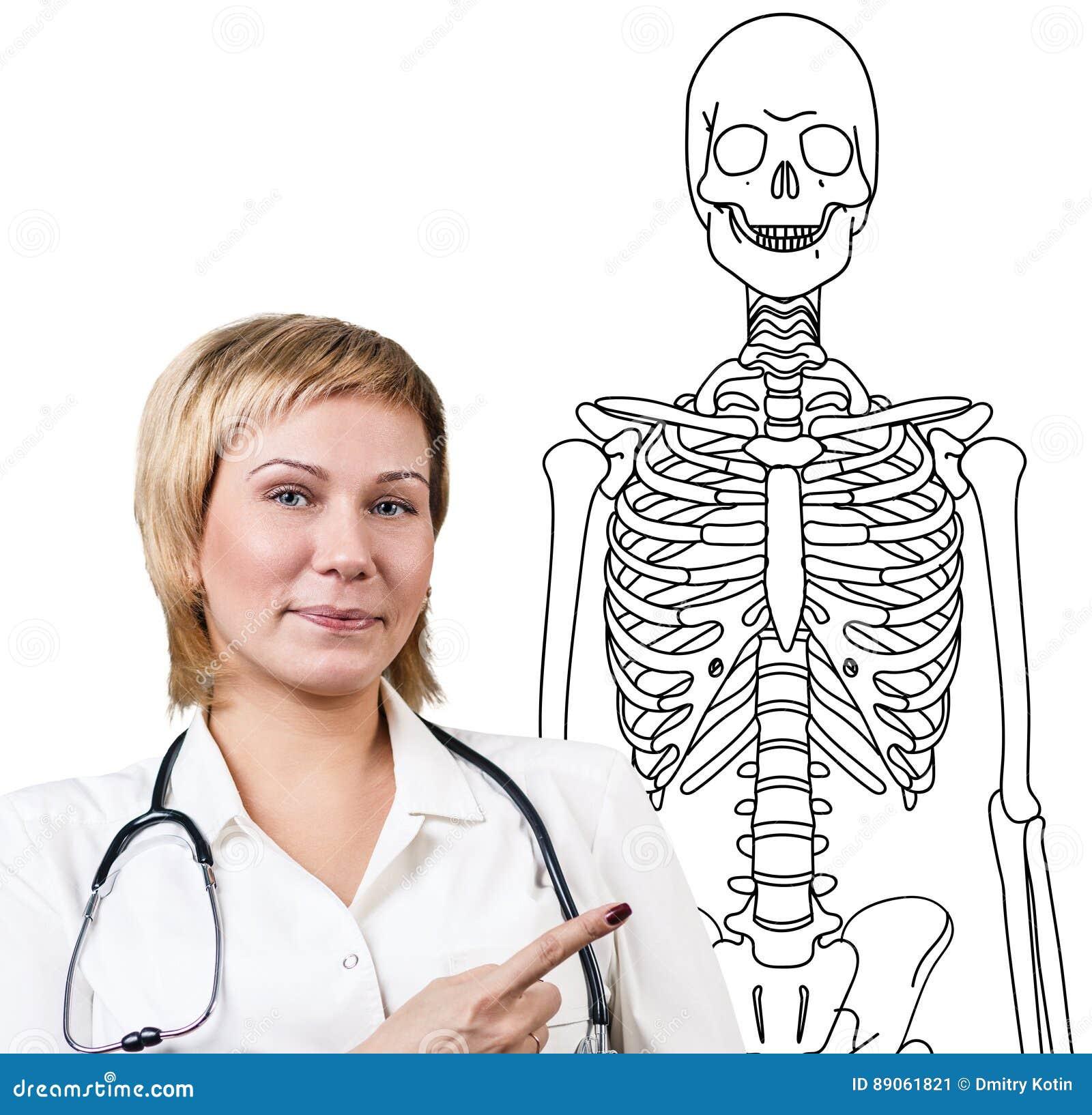 Mujer Del Doctor Que Señala En El Dibujo Del Esqueleto Humano Stock ...